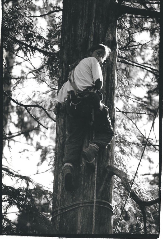Clayoquot+Treeclimbing.jpeg
