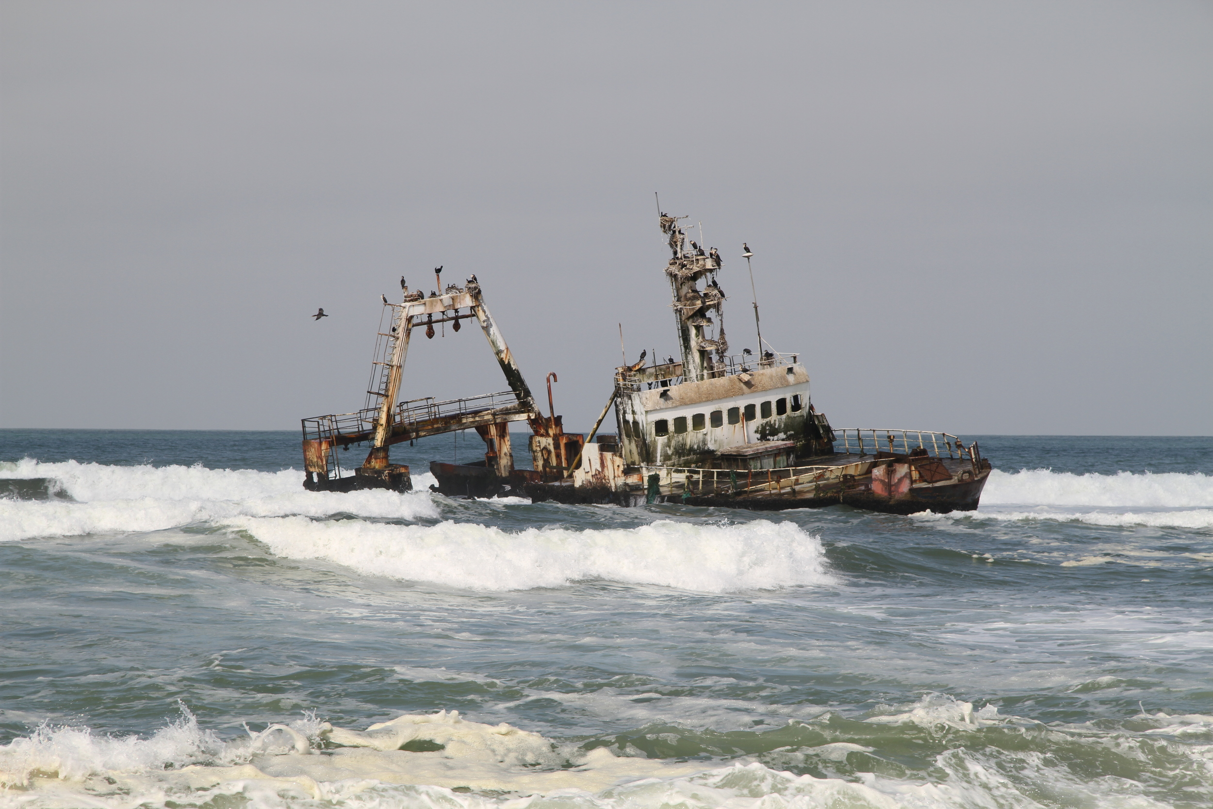 A recent shipwreck slowly rusts along the Skeleton Coast in Namibia, one of the world's most treacherous shorelines. (2015)