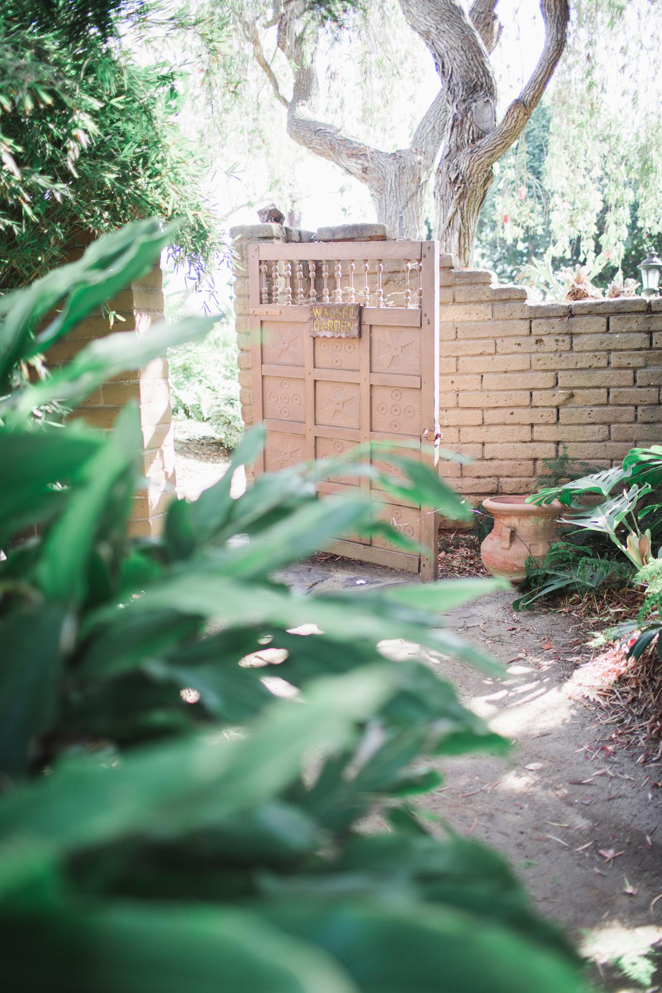 Such a cute garden and cute little door
