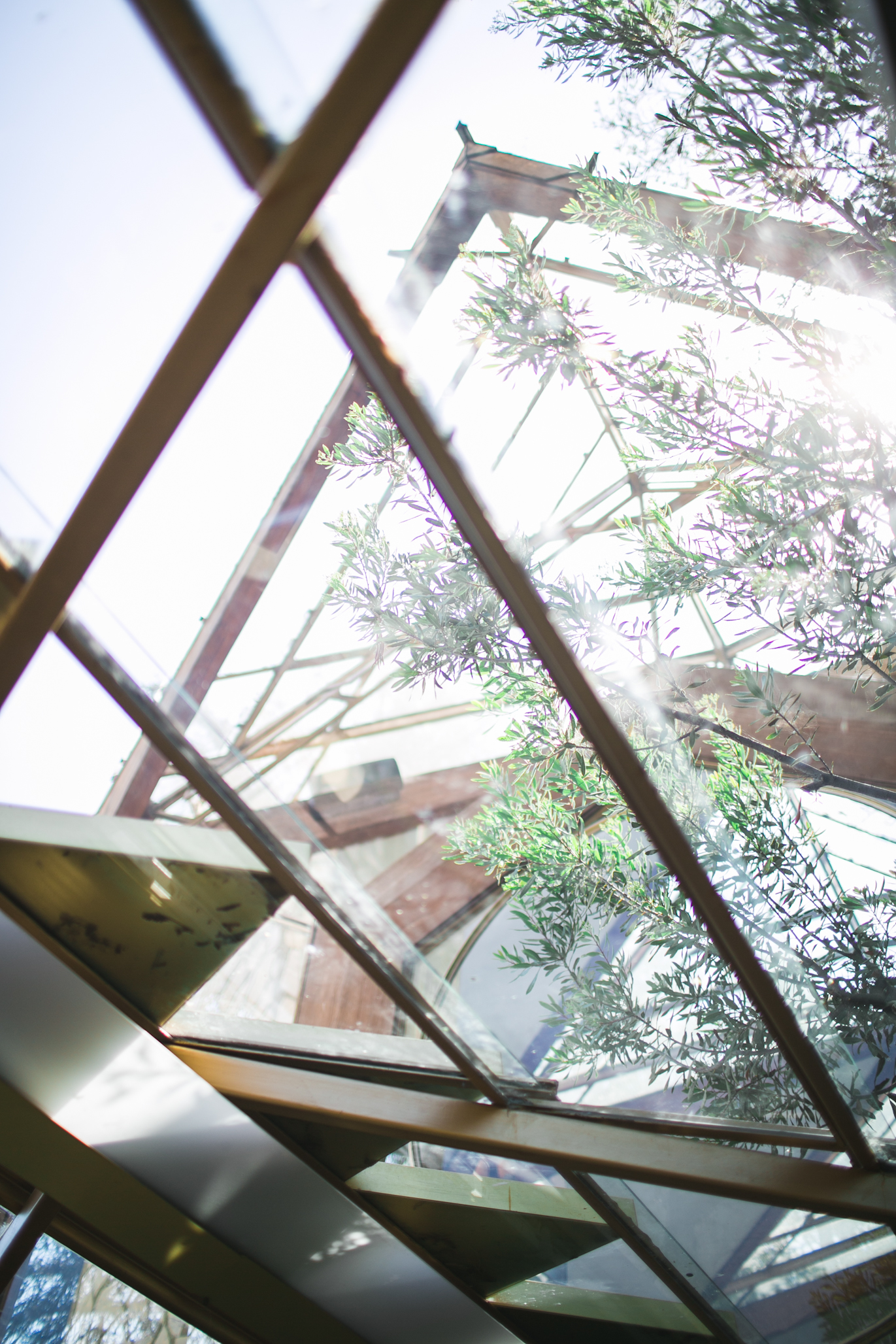 The glass structure of the chapel allows the perfect amount lighting to enter in.