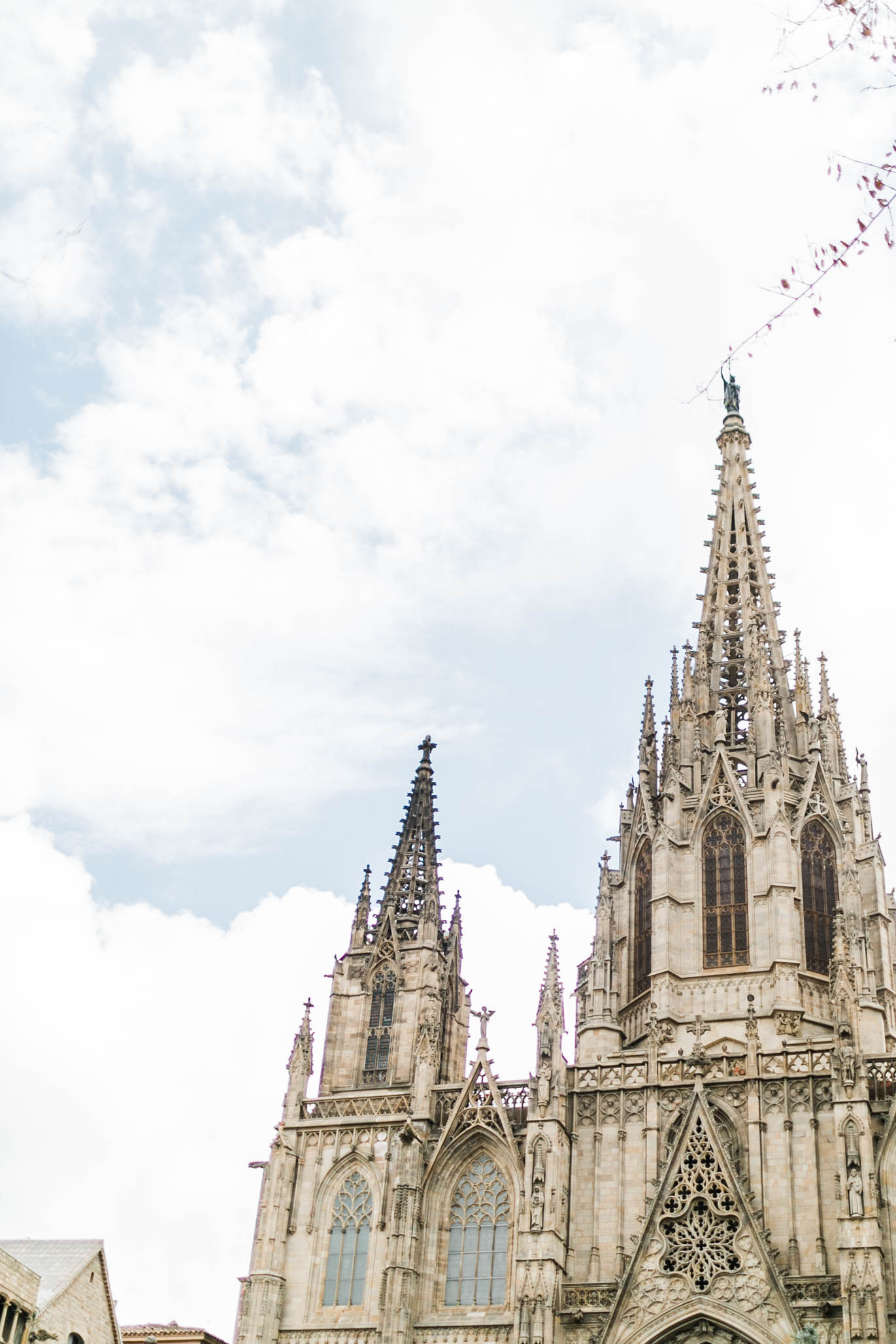 The Gothic Cathedral in Barcelona took my breath away.  Just staring at the crumbling cinder blocks, clustered columns, and aging gargoyles took me to the year 1144 when they begin building this beautiful thing.