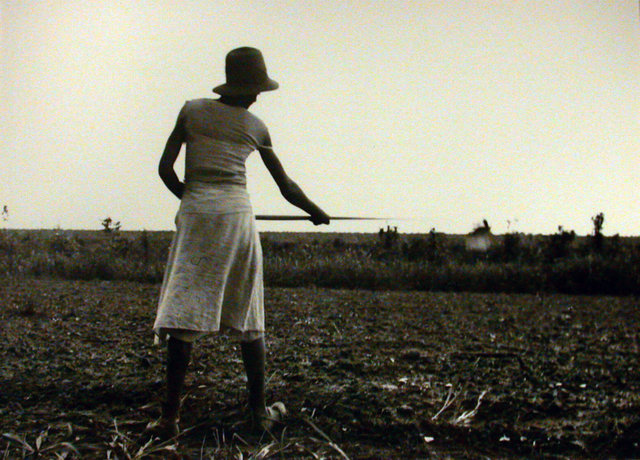 Eudora Welty; ' Chopping in the Field'  1936