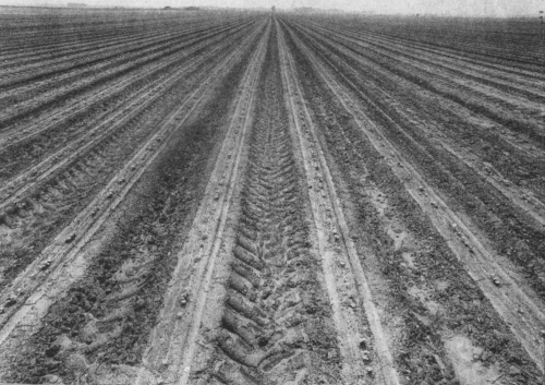 """Image: Bill Steber; Freshly plowed field on the Stovall Plantation, Mississippi Delta  (1993);gelatin silver; image (14 x 14""""), paper (16 x 20""""), signed; open edition   Note: Muddy Waters was living on Stovall Plantation outside of Clarksdale when he recorded for the library of congress in 1941."""