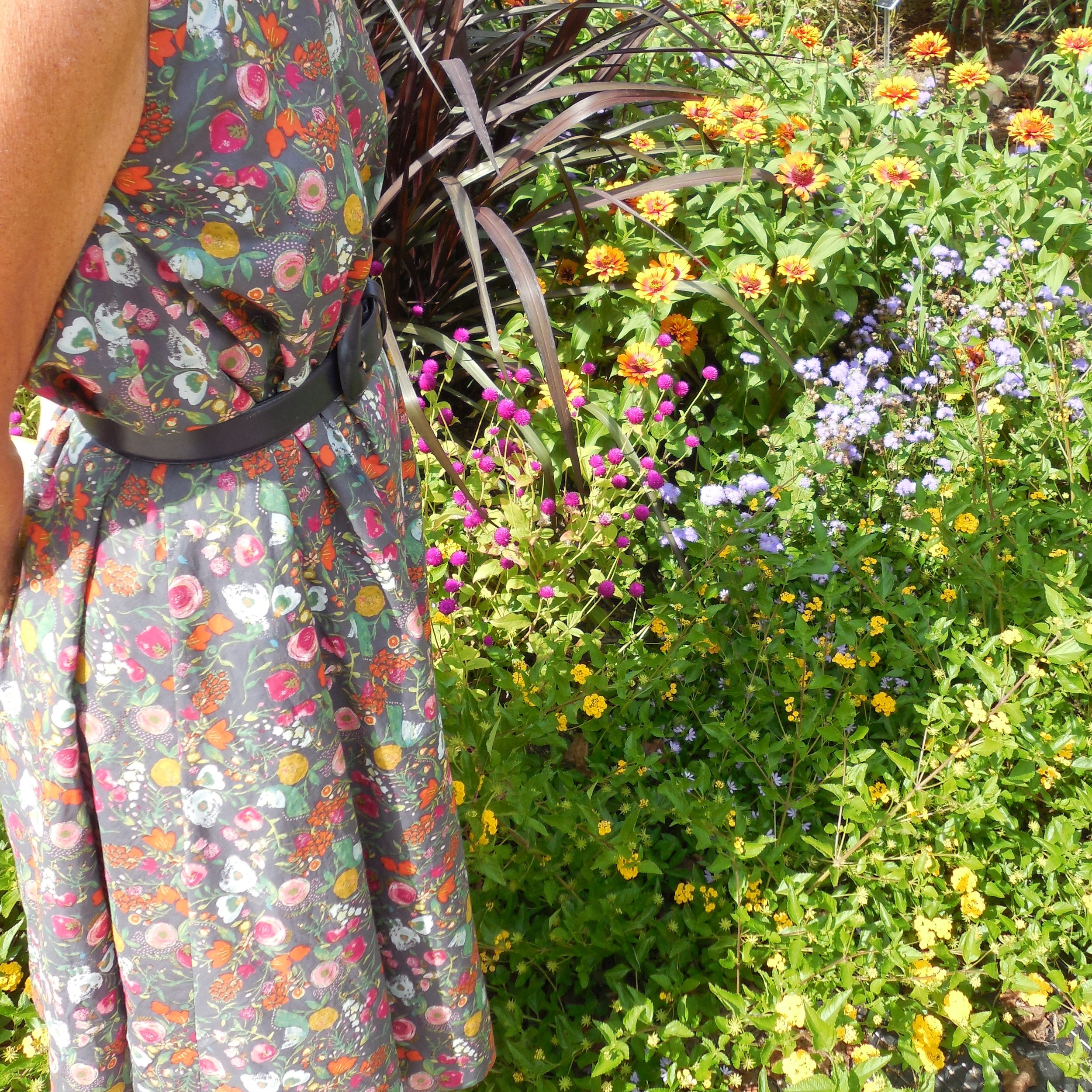 amaranth flower.jpg