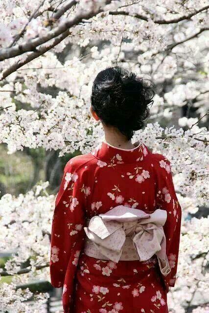 kimono obi cherry blossoms.jpg