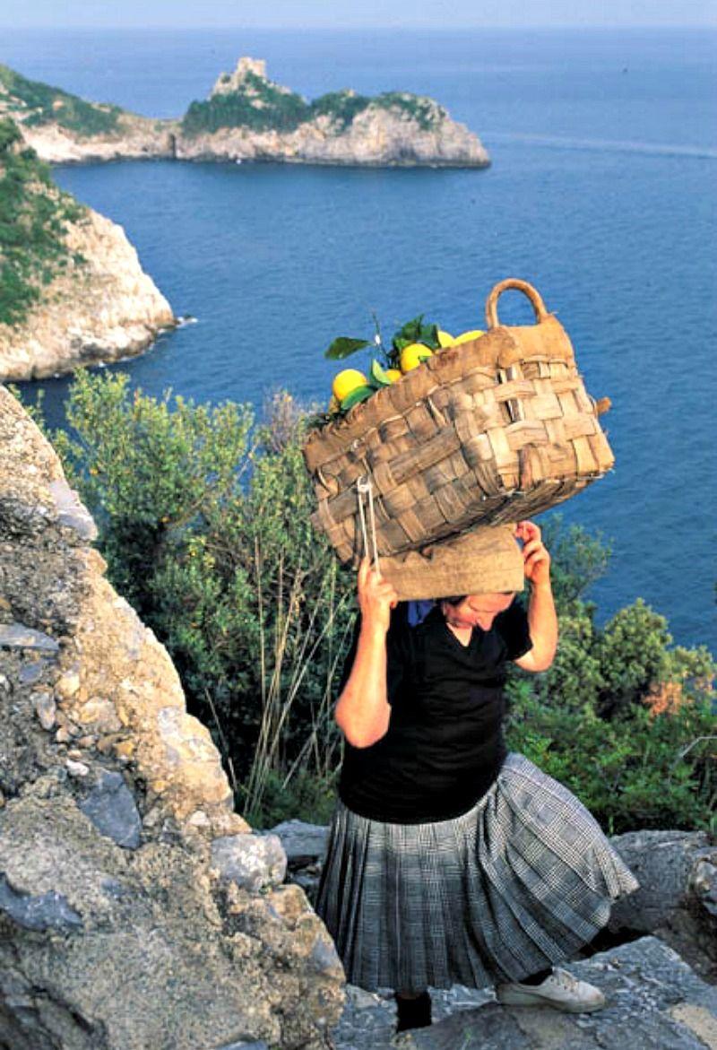 lemons amalfi coast.jpg