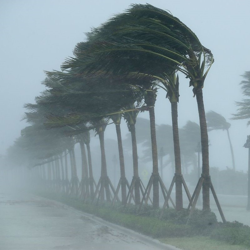 hurricanes (2).jpg