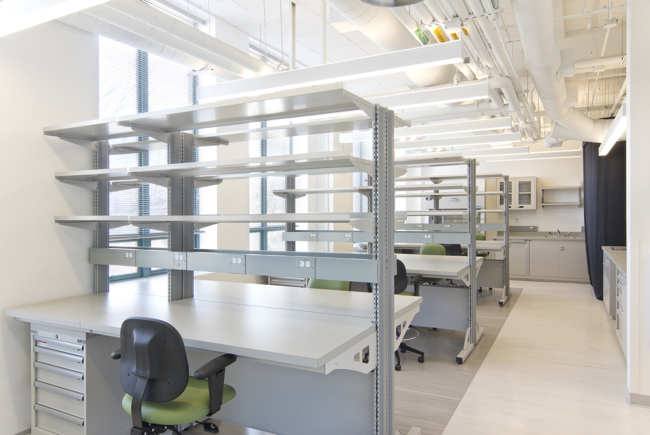 Bioanthropology Laboratory  Boston University