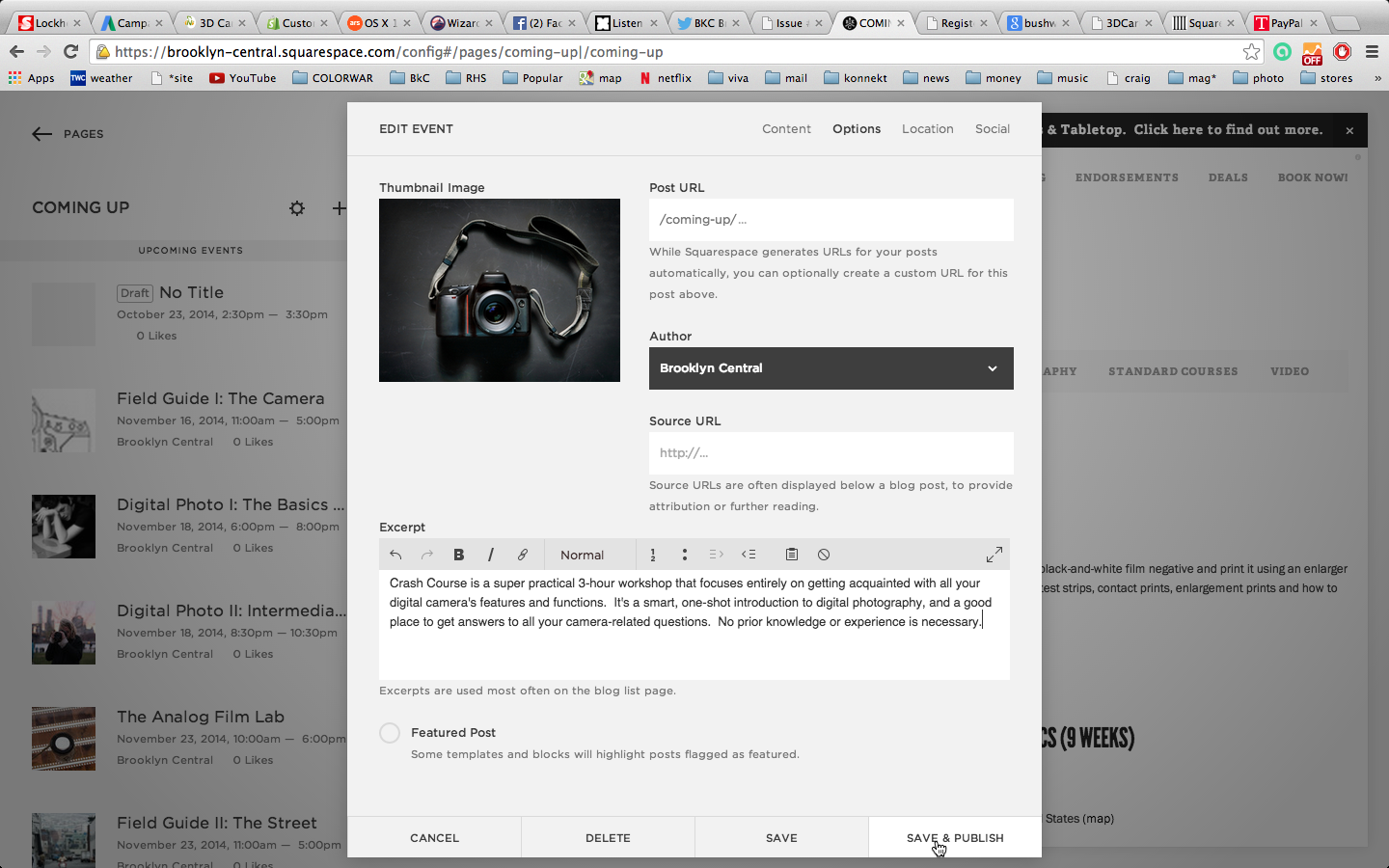 PASTE the text in the EXCERPT box.  Check your work. If everything looks good, click SAVE AND PUBLISH