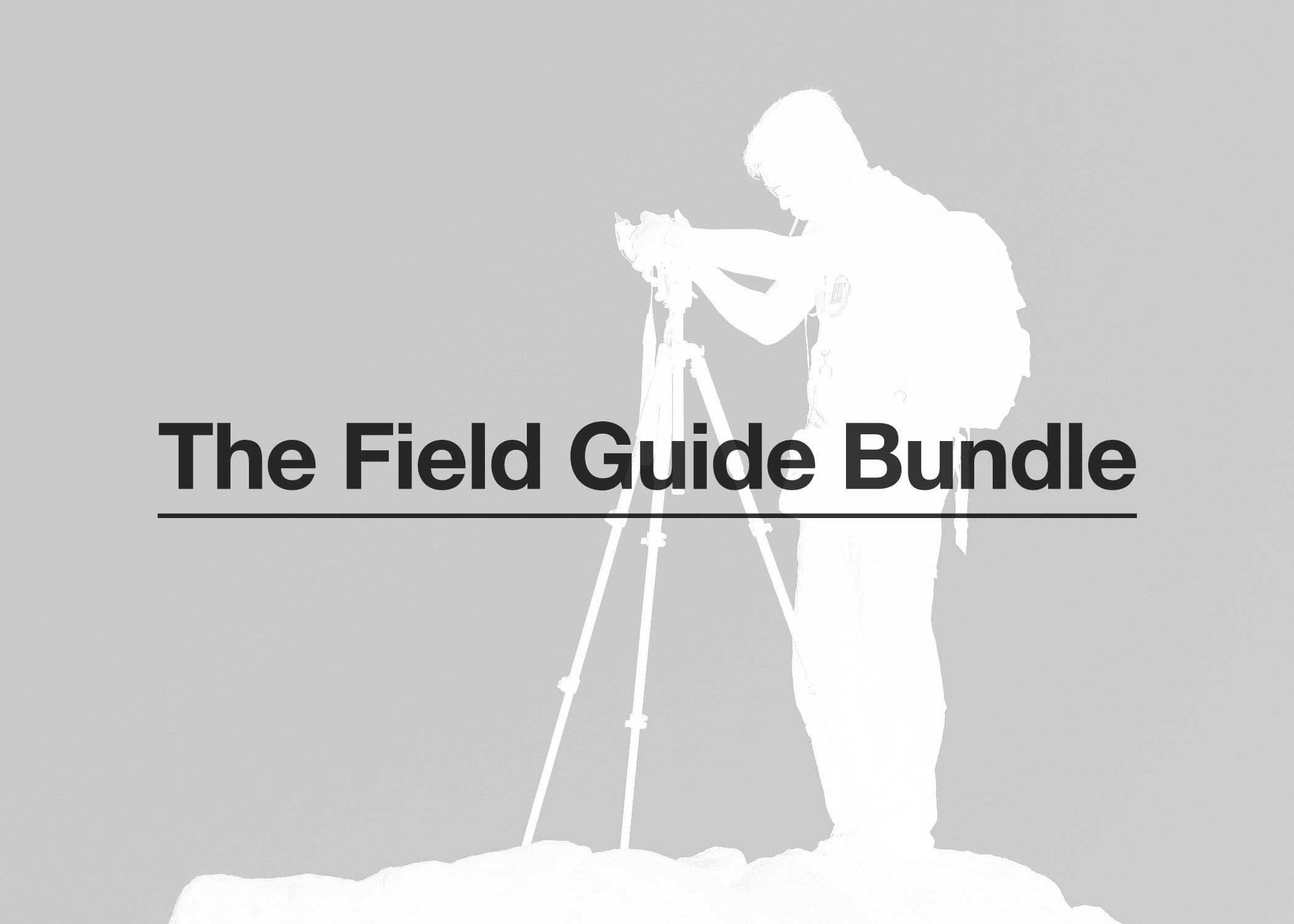 Any 3    Field Guides   of your choice for just  $299