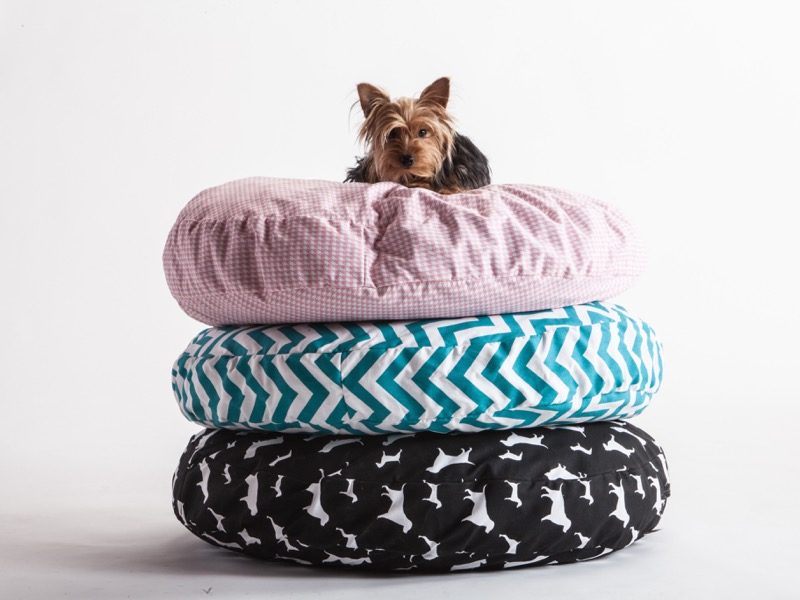 Comfort Research : Pet Bed