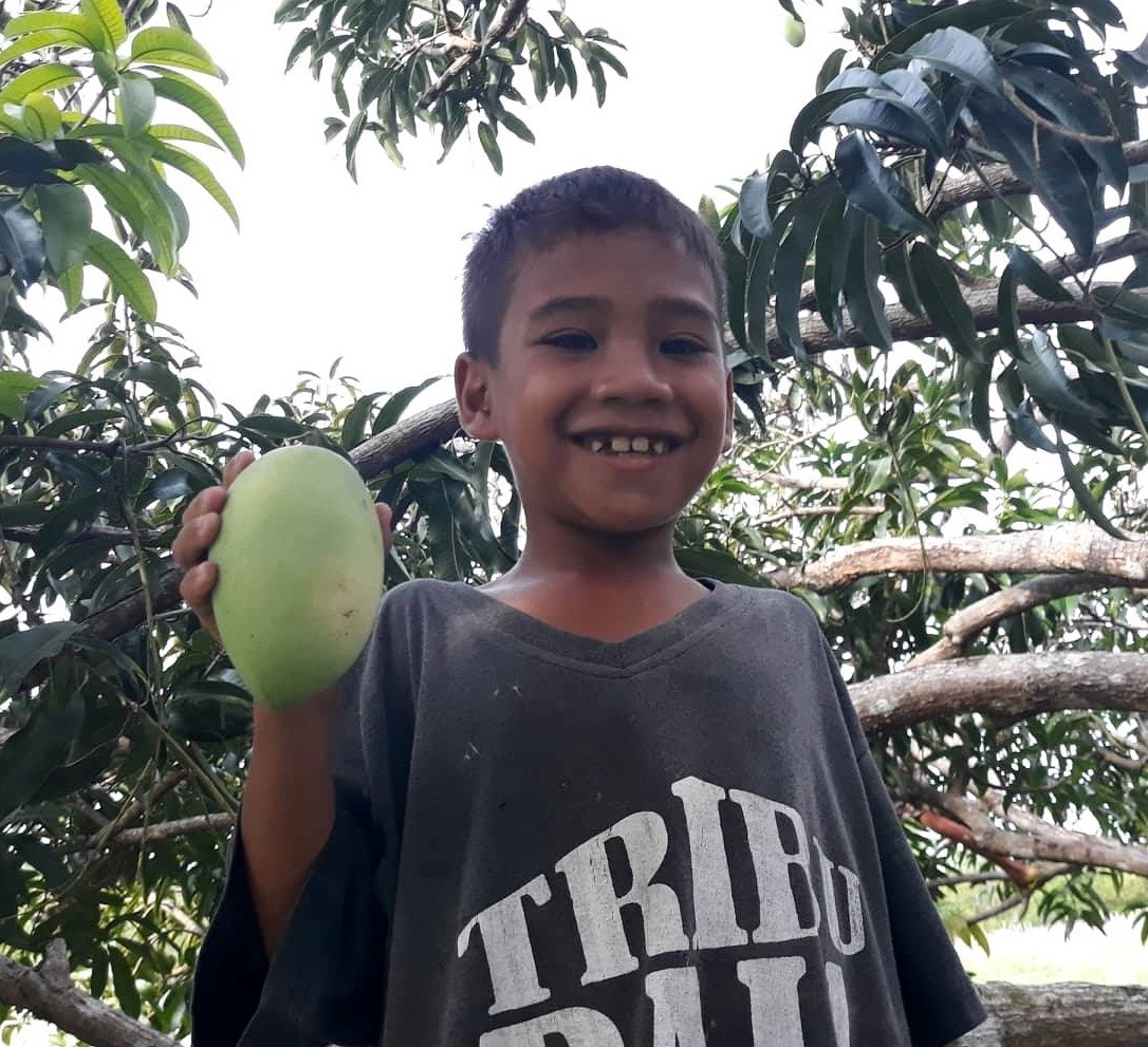 Bogo mangon in hand (1).jpg