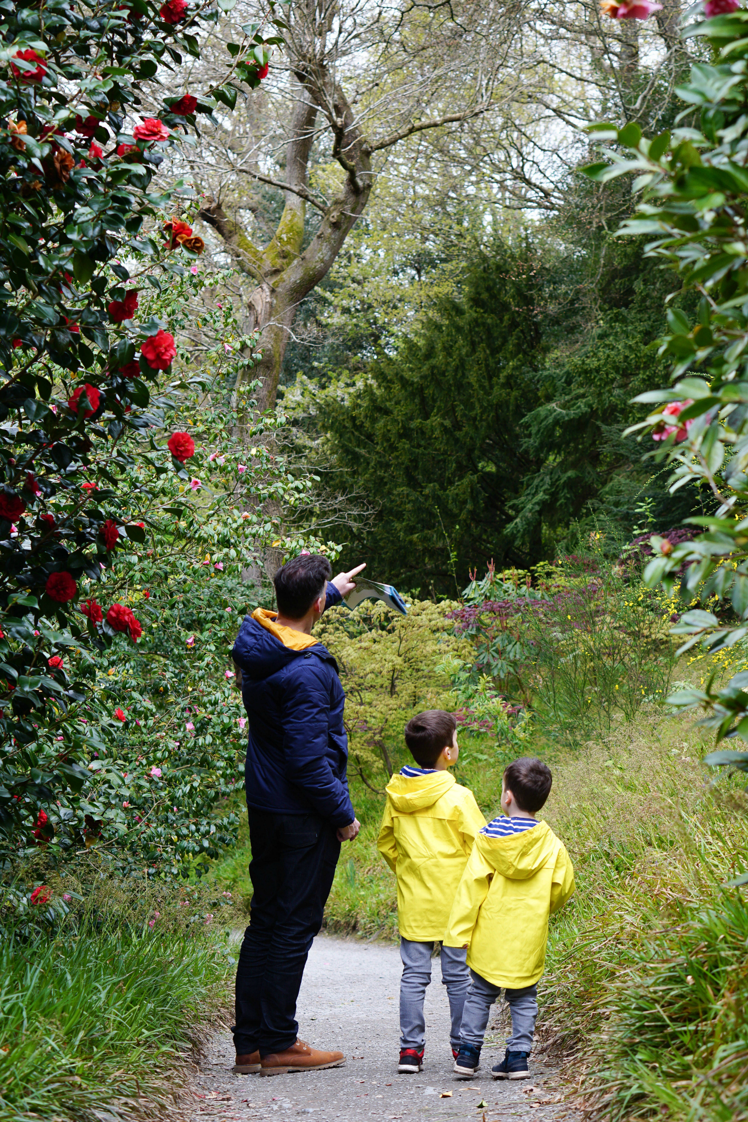 Bug and bloom hunting at Bodnant Garden - it's the simple things that make us happy