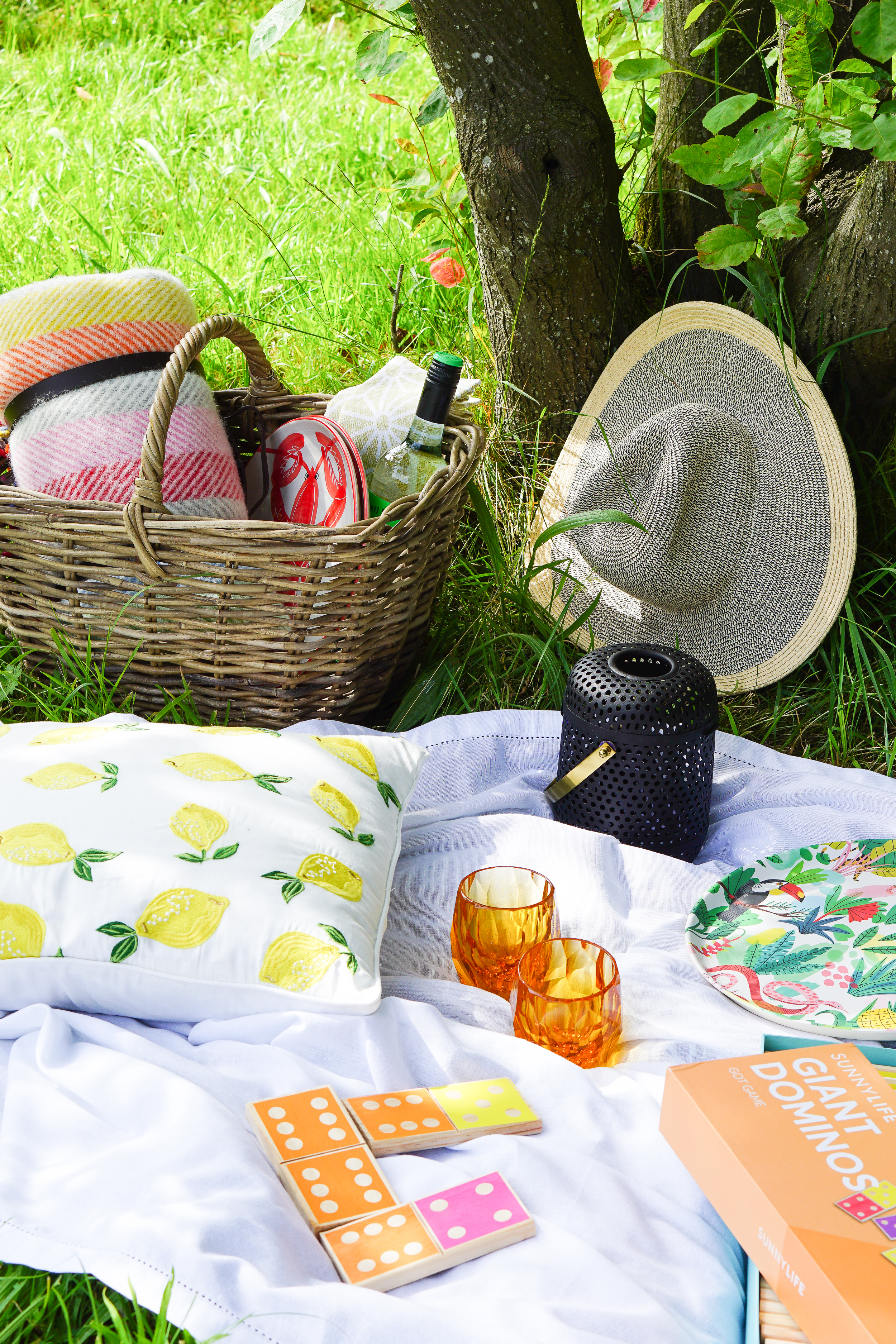 All good picnics start with the perfect basket (and chilled wine)