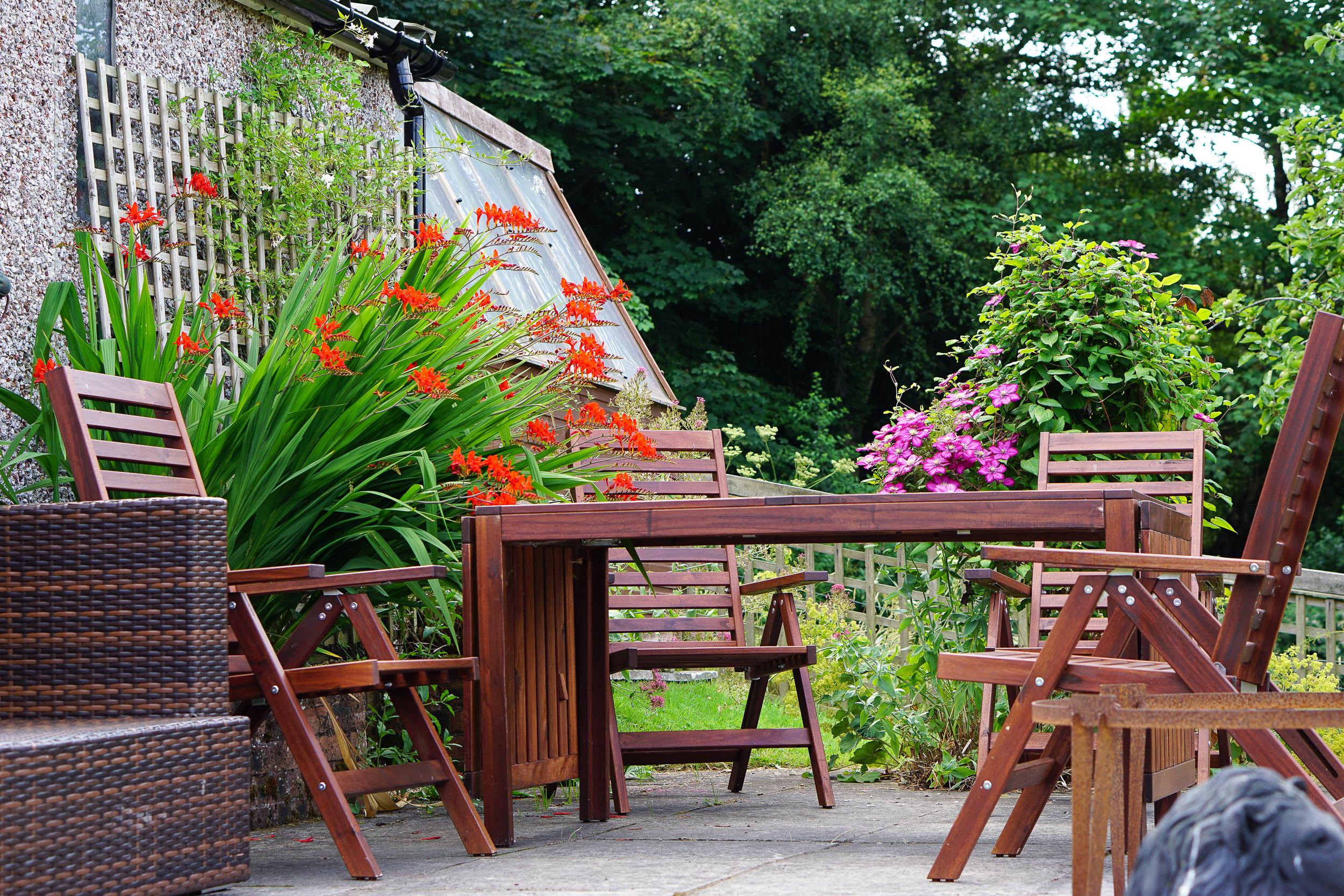 Garden overwhelm ... our high maintenance beauty