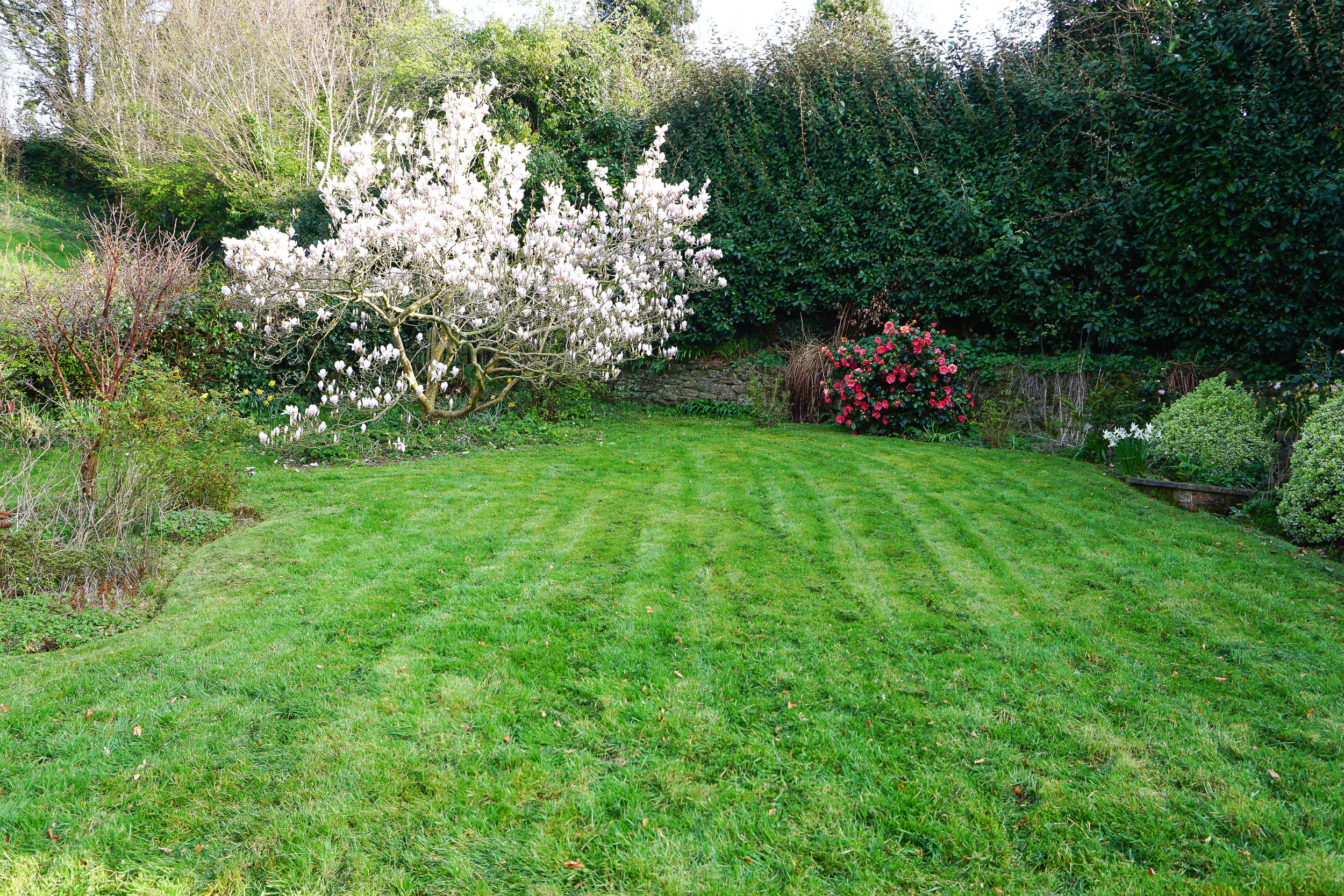 Getting the garden ready for Spring on Flymo first cut Sunday