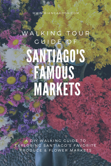 walking tour guide of santiago's 5 markets