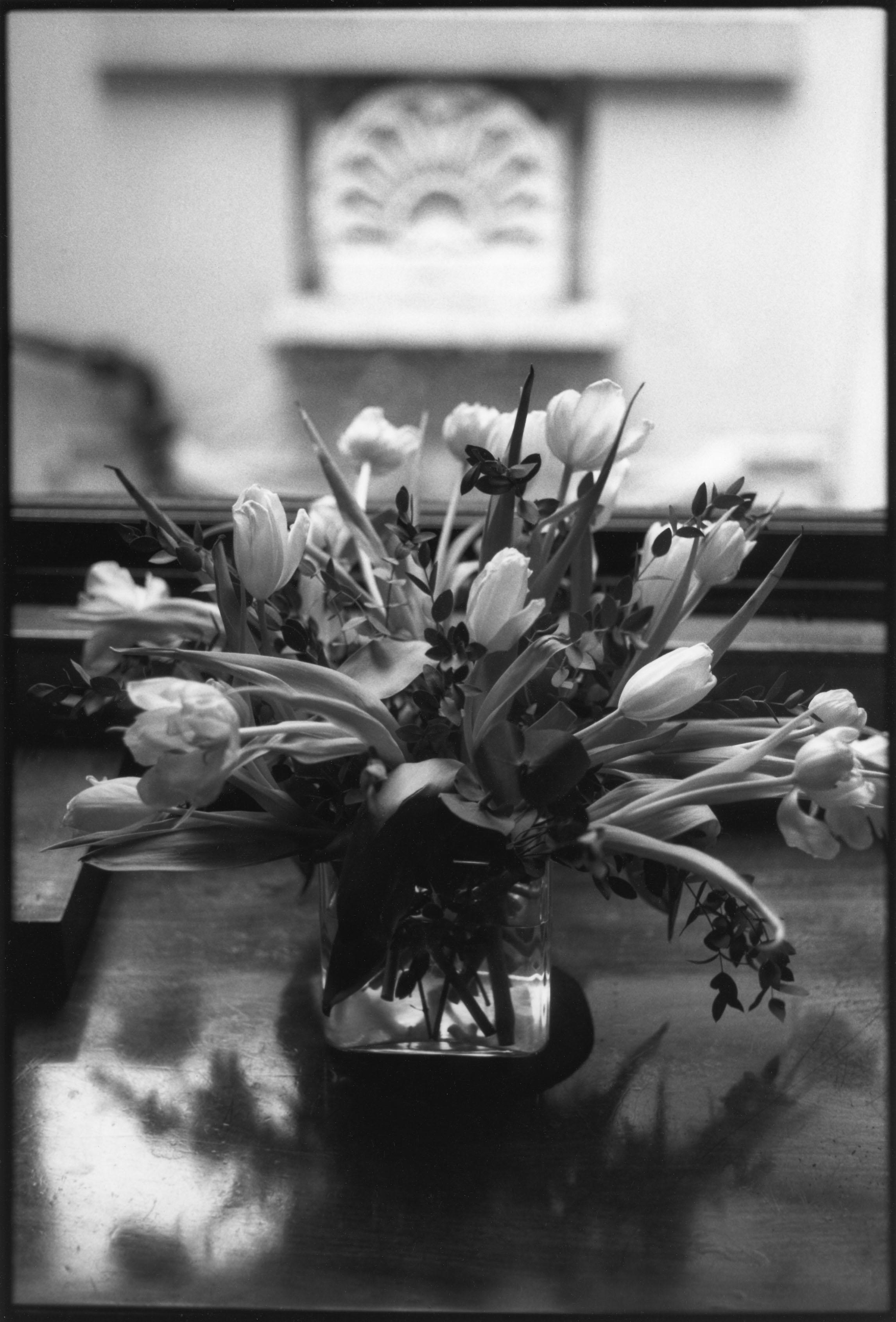 Soane's Tulips.jpg