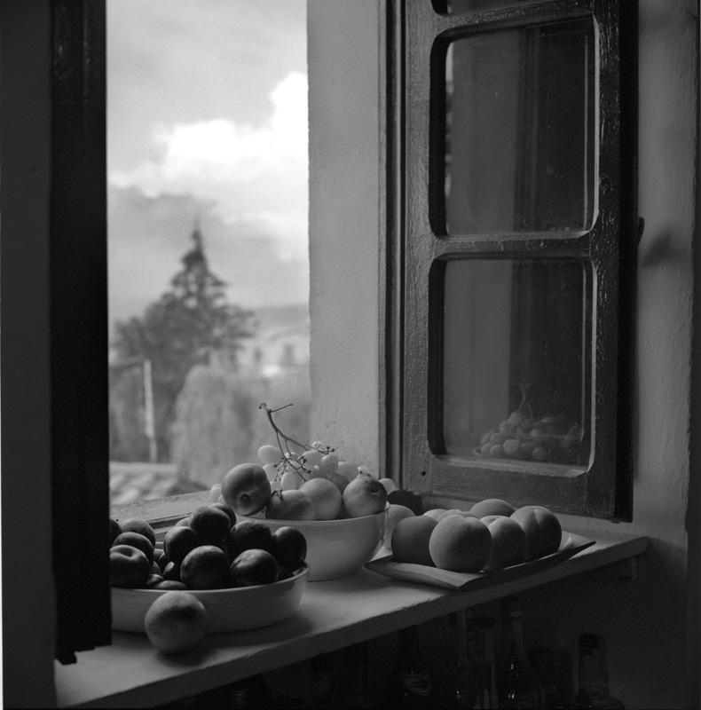 FruitMontacuto2000.jpg
