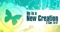 New Creation Bible Church