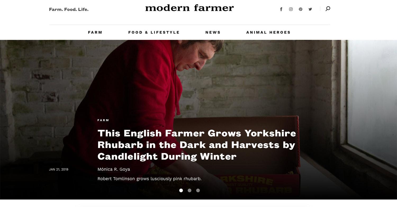 forced-rhubarb-modern-farmer-monicargoya.jpg