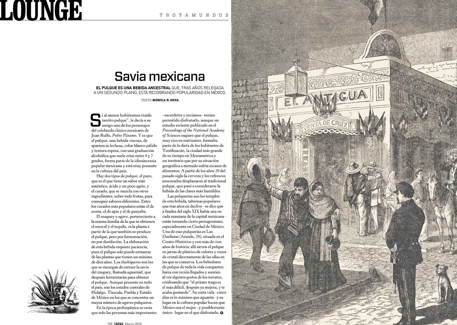 Mexican pulque - Tapas magazine March 2018 - Words