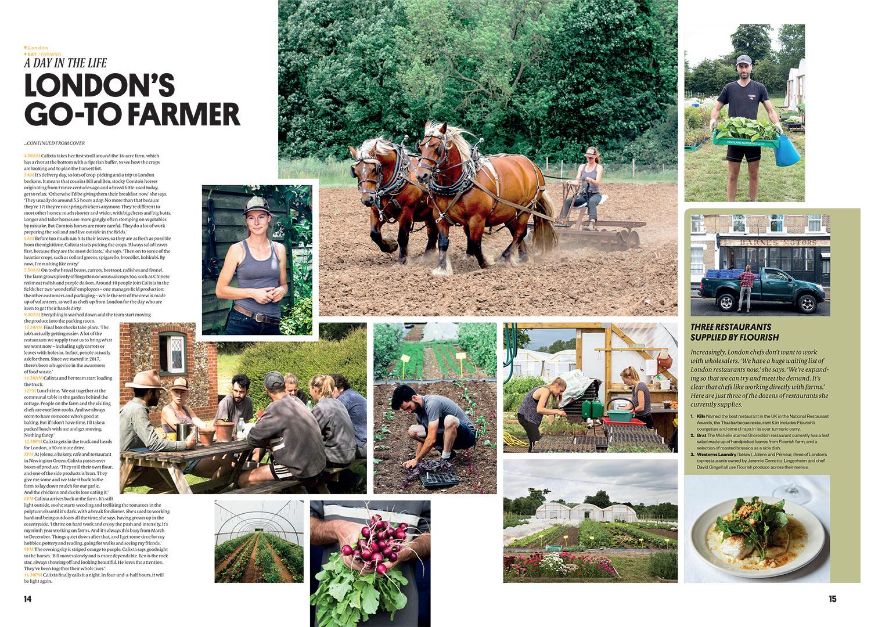 Courier-Flourish-Farm.jpg