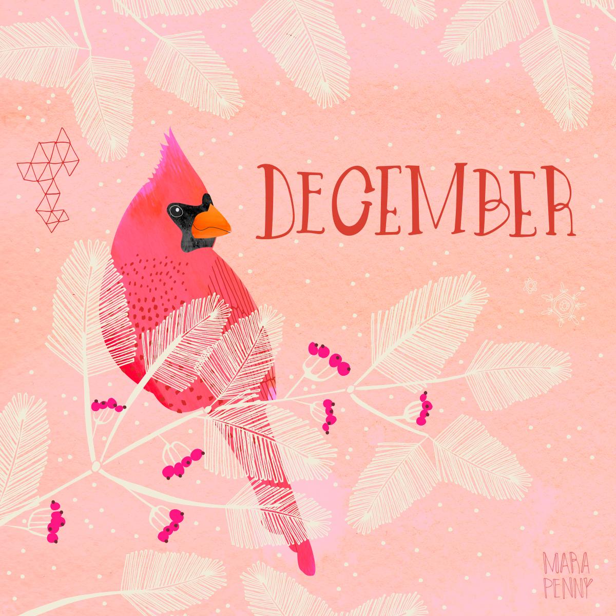 December Cardinal