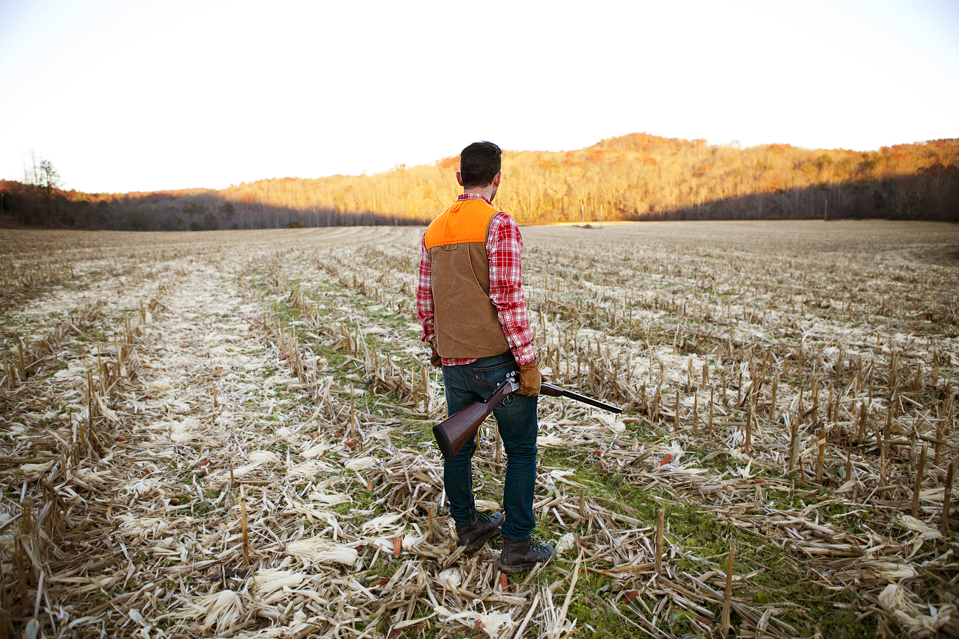 ADV007_Hunting_Mark_cornfield1.jpg