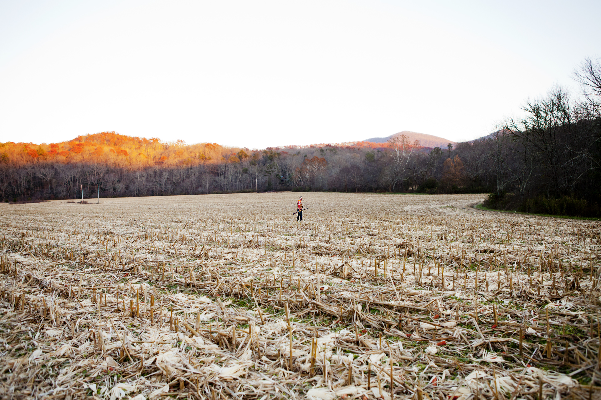 ADV007_Hunting_Mark_cornfield5.jpg