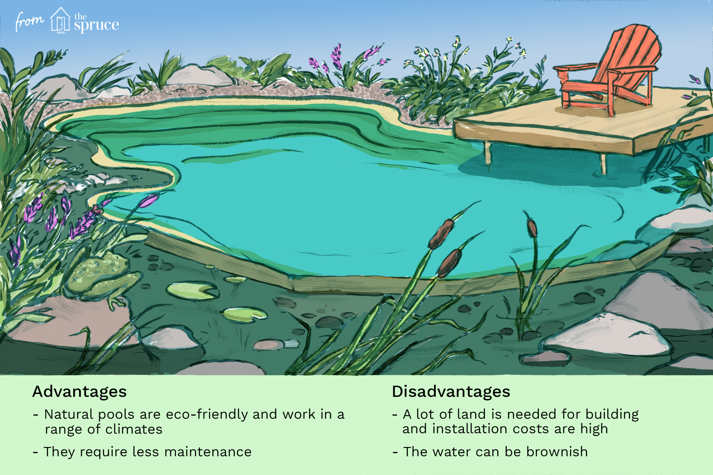 is-a-natural-swimming-pool-right-for-you-2737100-final v5.png