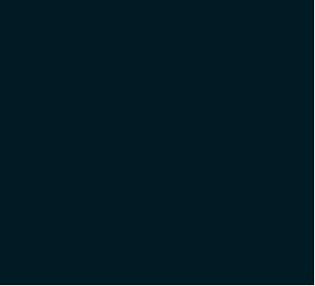 Byrds Eye Logo