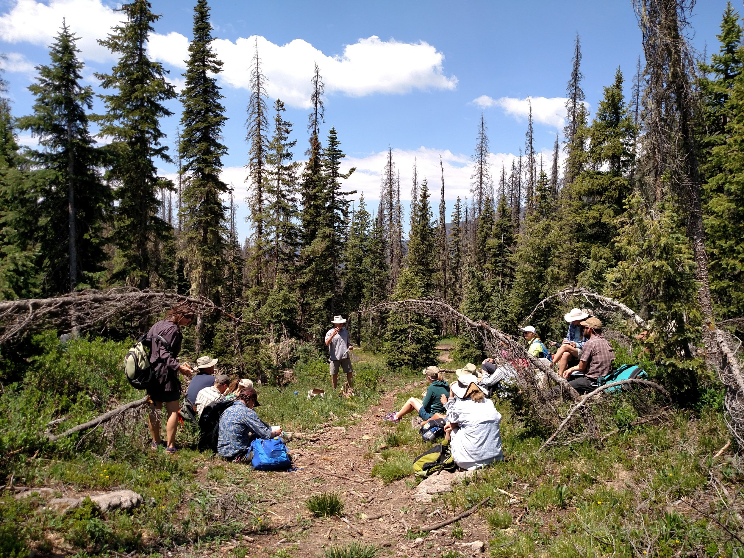 Steve Hartvigsen shares a wealth of knowledge from his lifelong service with the USFS. This forest lecture focused on the relationship between forest health and water quality and quantity.