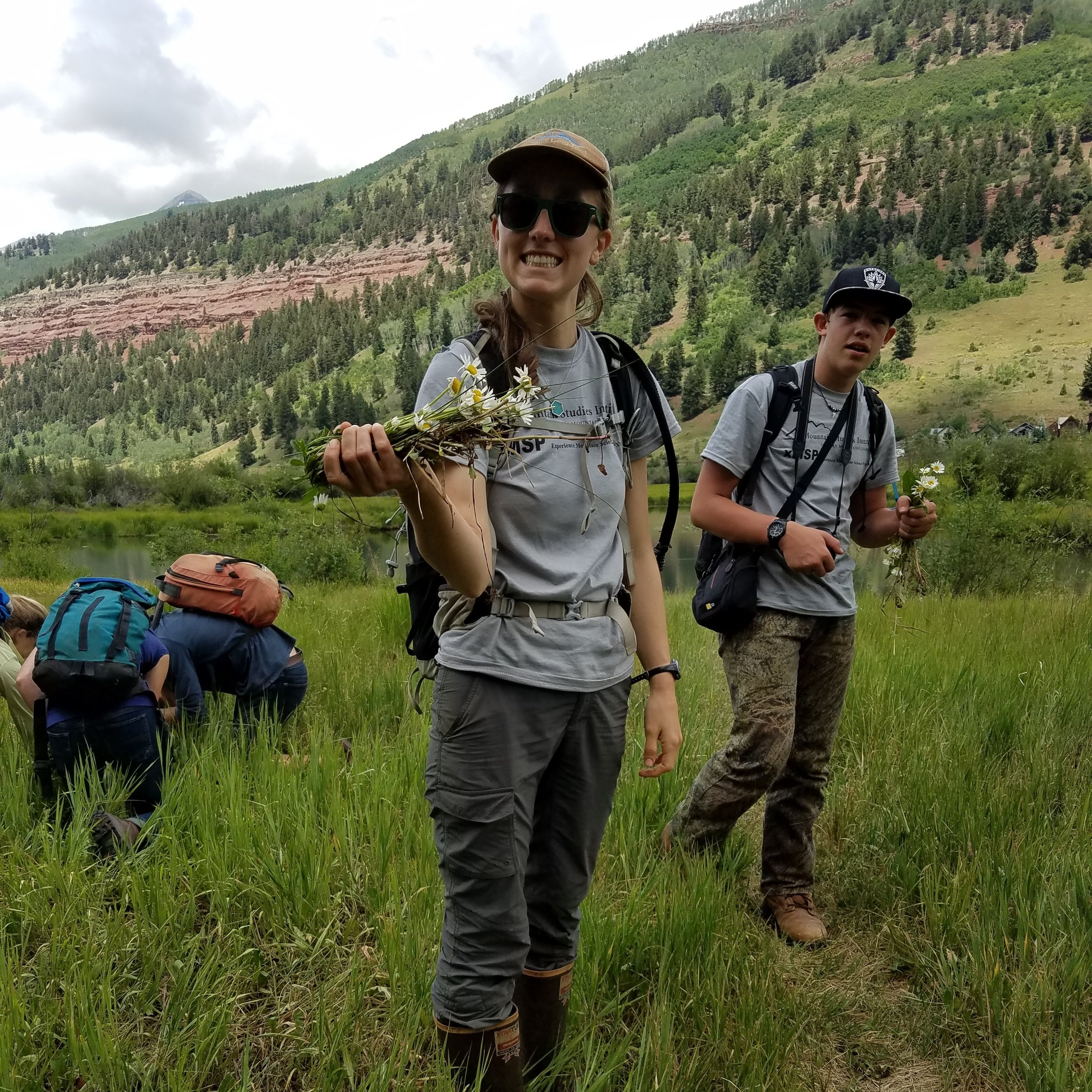 xMSP students and MSI staff mentors tackle a patch of Oxeye daisies on the Telluride Valley Floor.