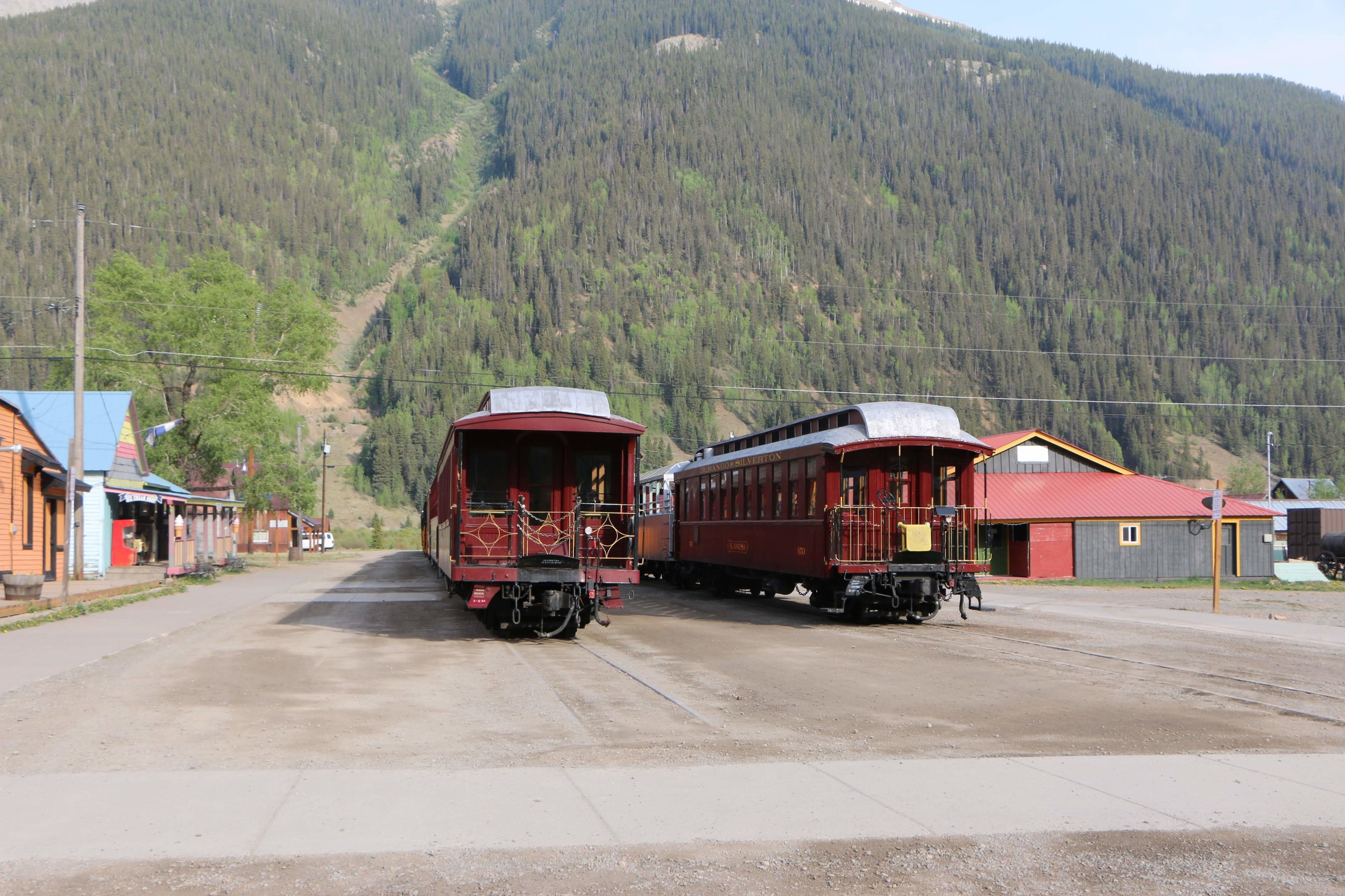 Trains parked indefinitely in Silverton, photo by Priscilla Sherman