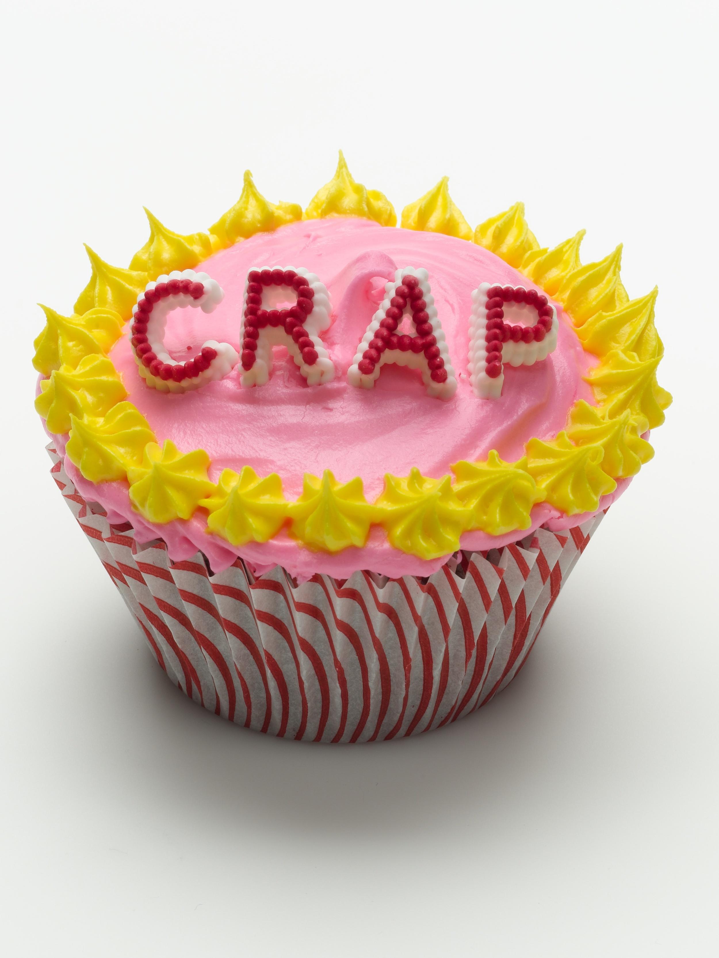 crap cupcake.jpg