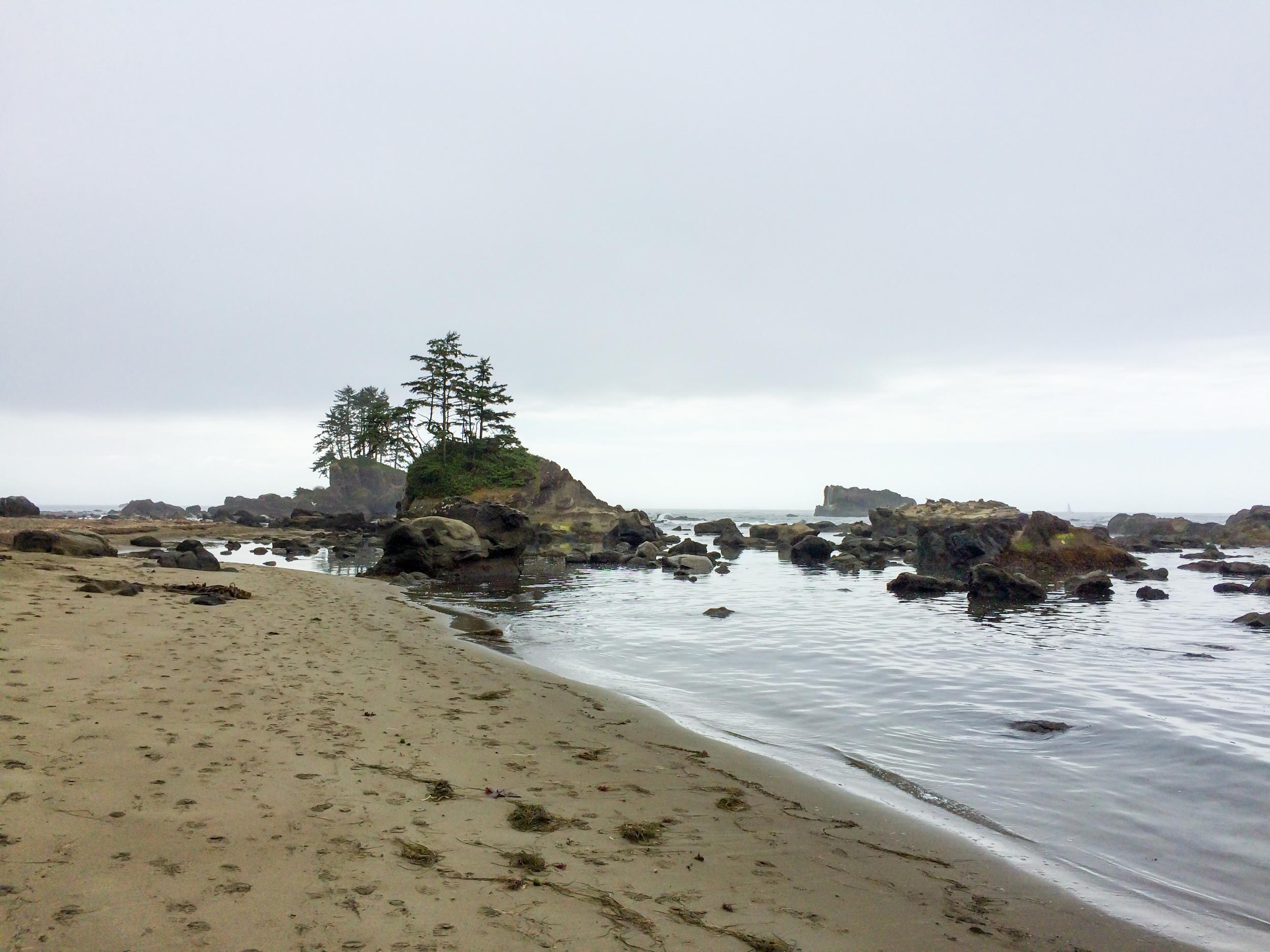 West Coast Trail (20 of 30).jpg