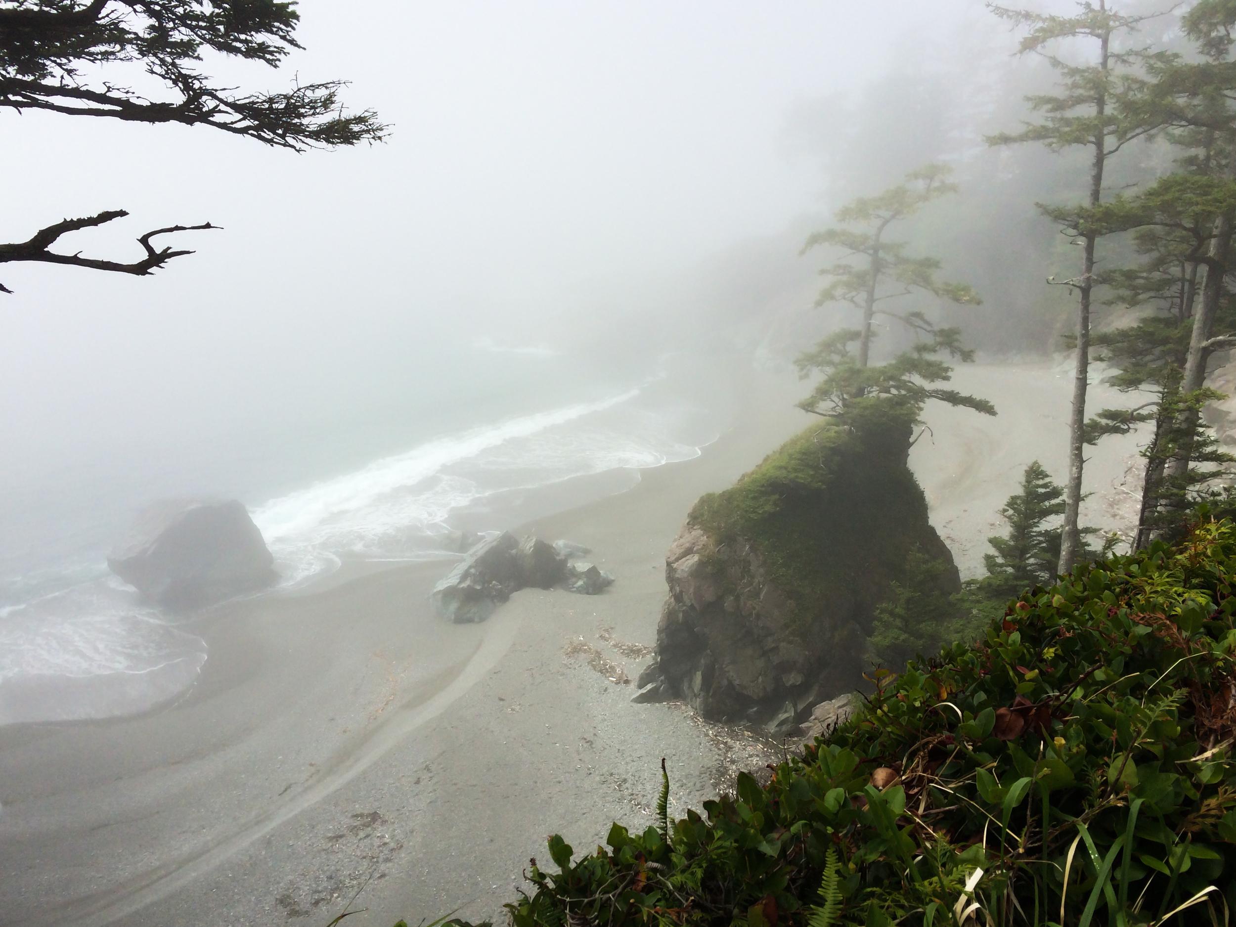 West Coast Trail (23 of 30).jpg