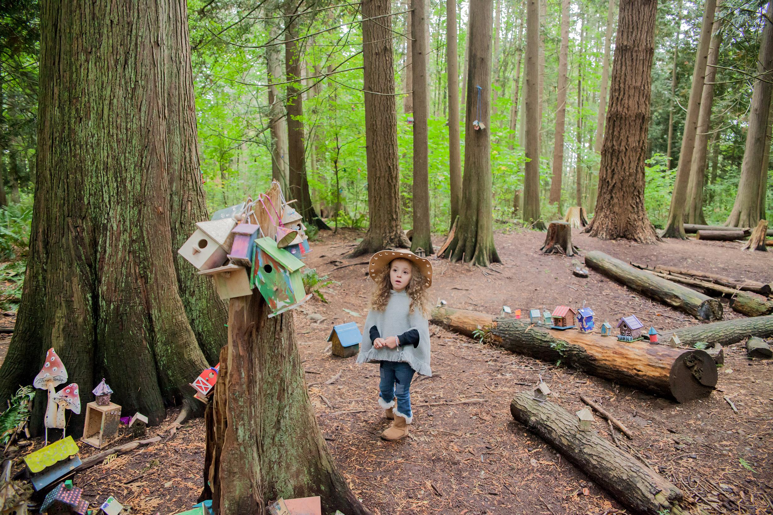 Redwood Park - October 2017 - WT (126 of 168).jpg