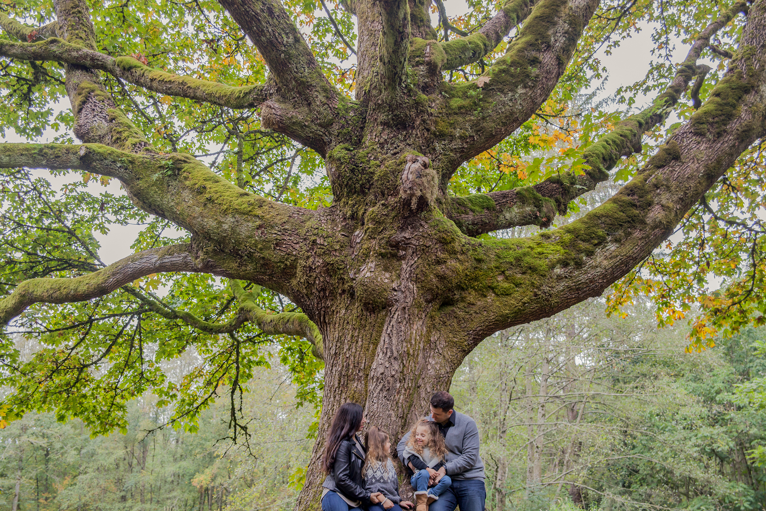 Redwood Park - October 2017 - WT (71 of 168).jpg