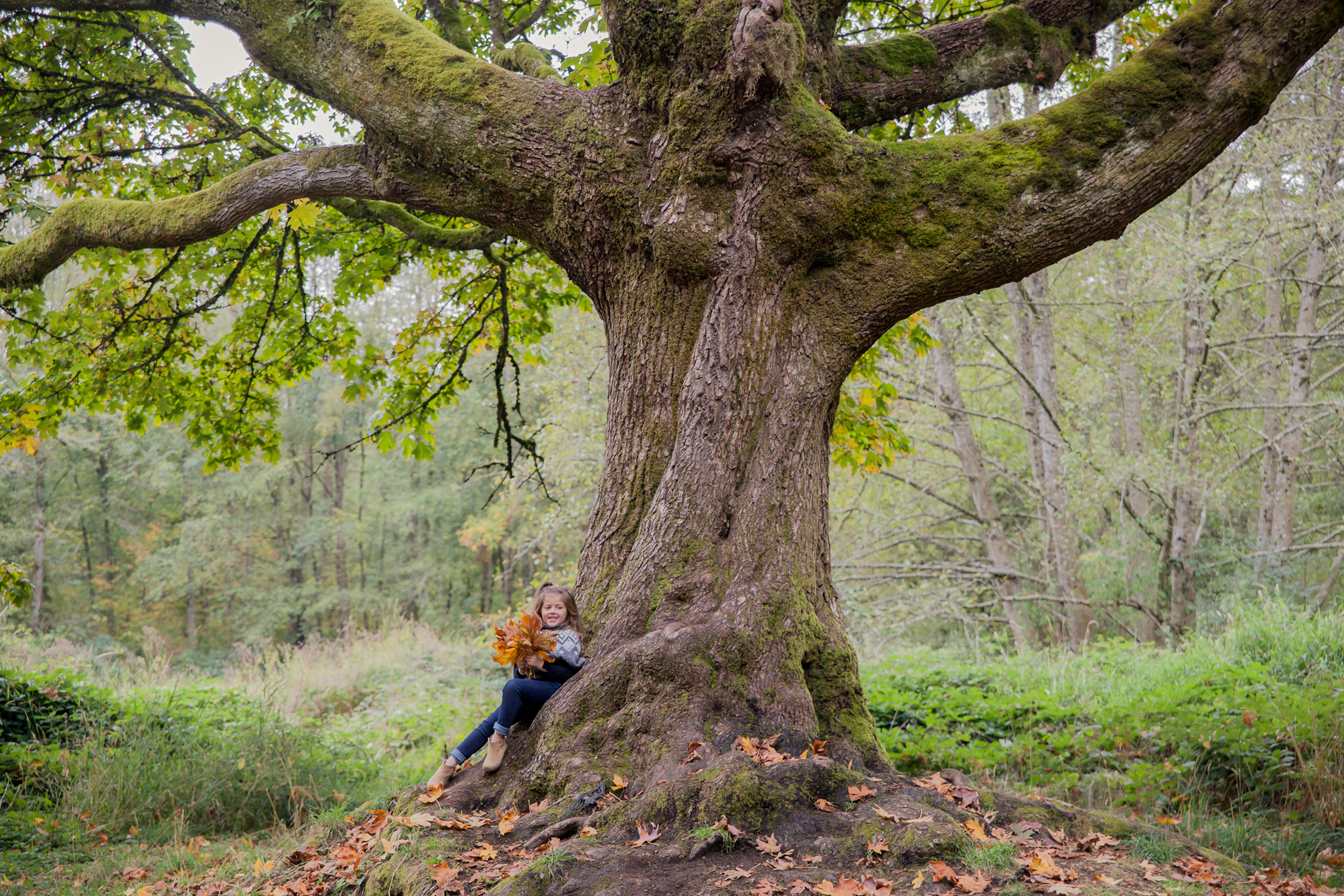Redwood Park - October 2017 - WT (94 of 168).jpg