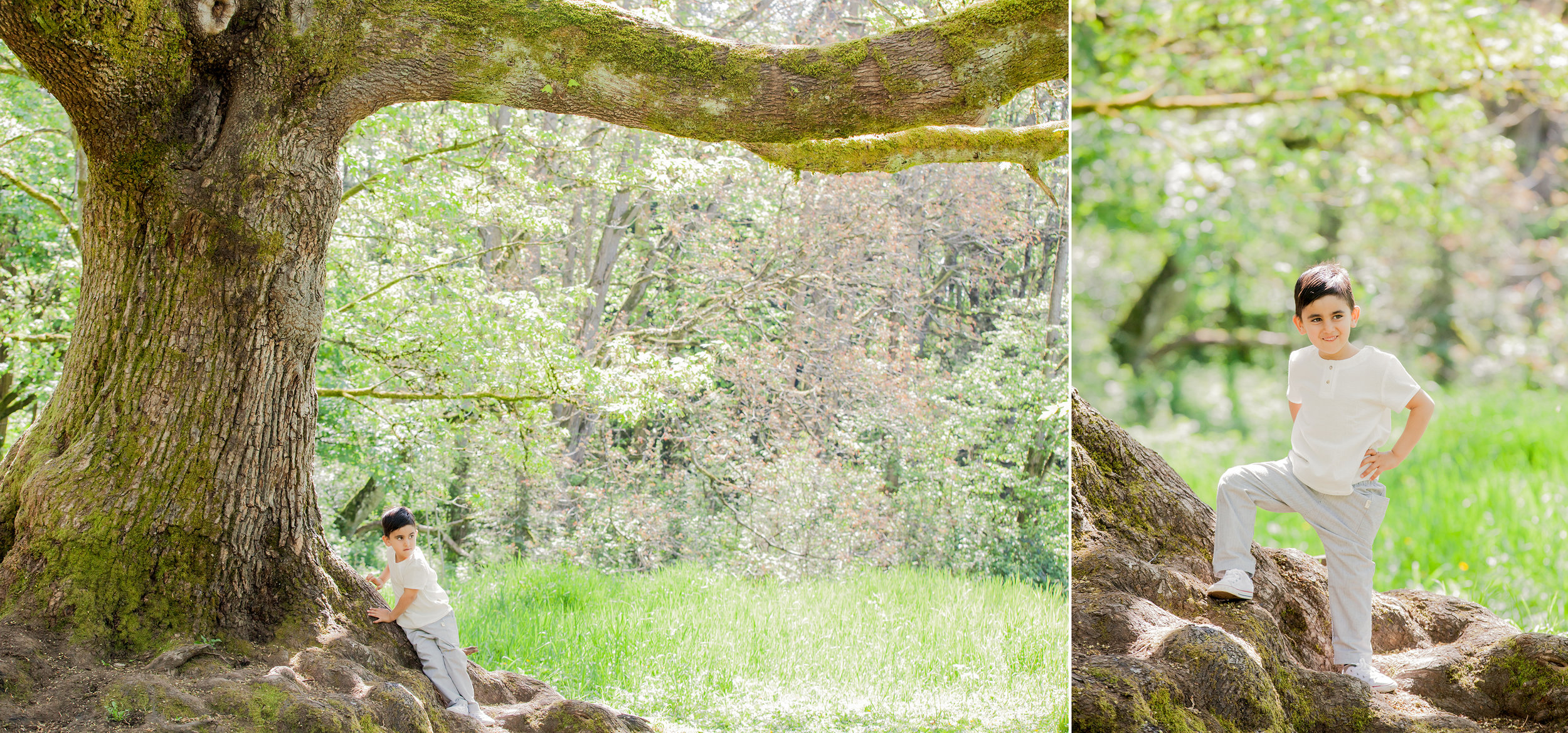Redwood Park - May 2018 - WT (41 of 175).jpg