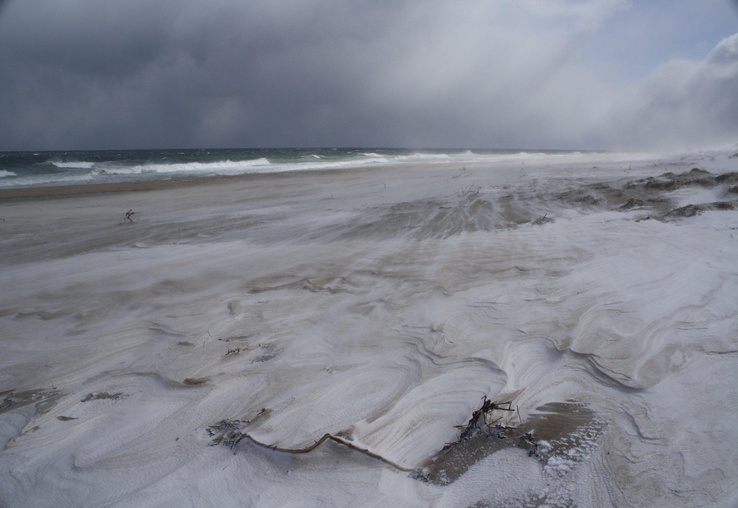 Winter winds 2.jpg