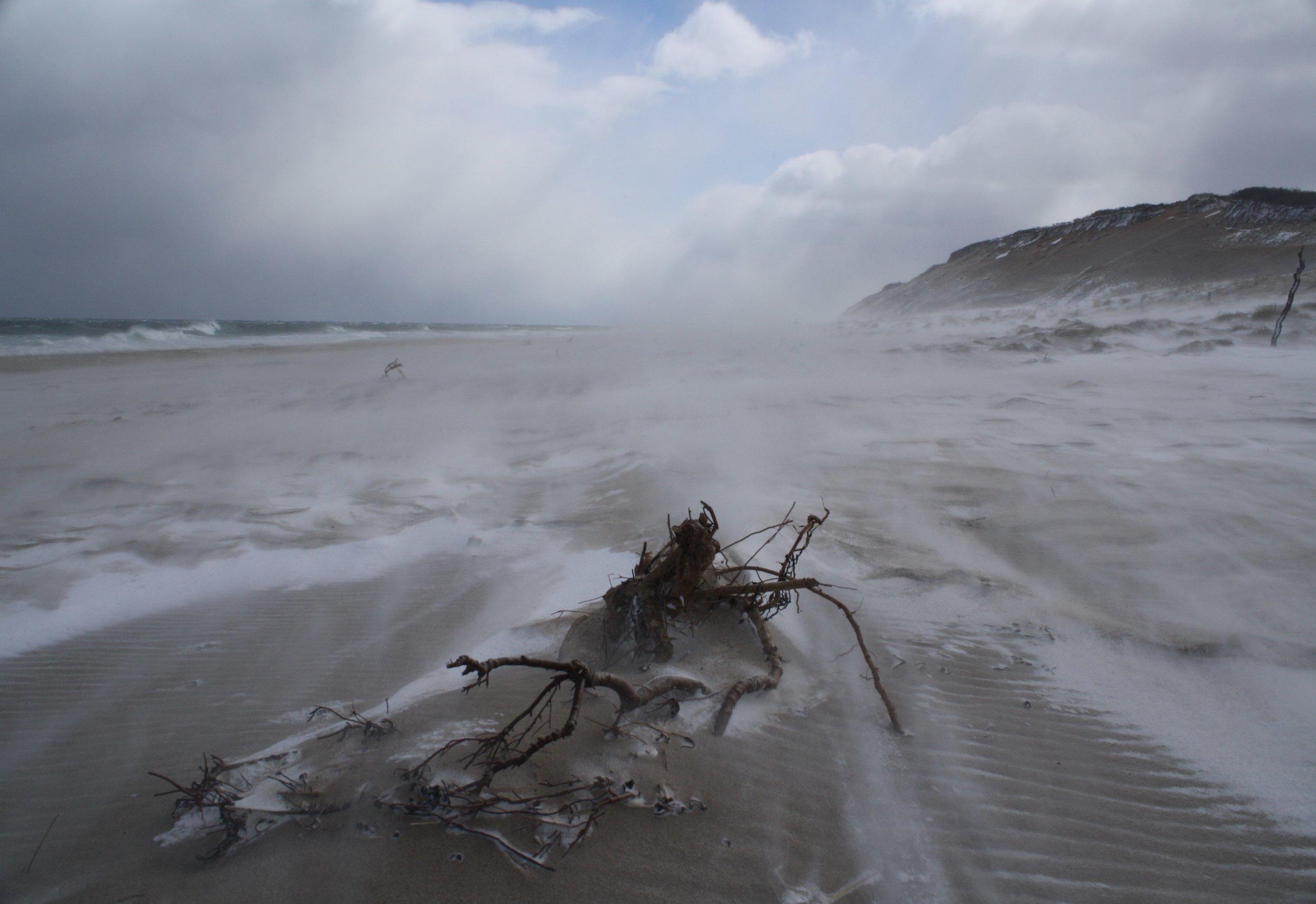 Winter winds 3.jpg