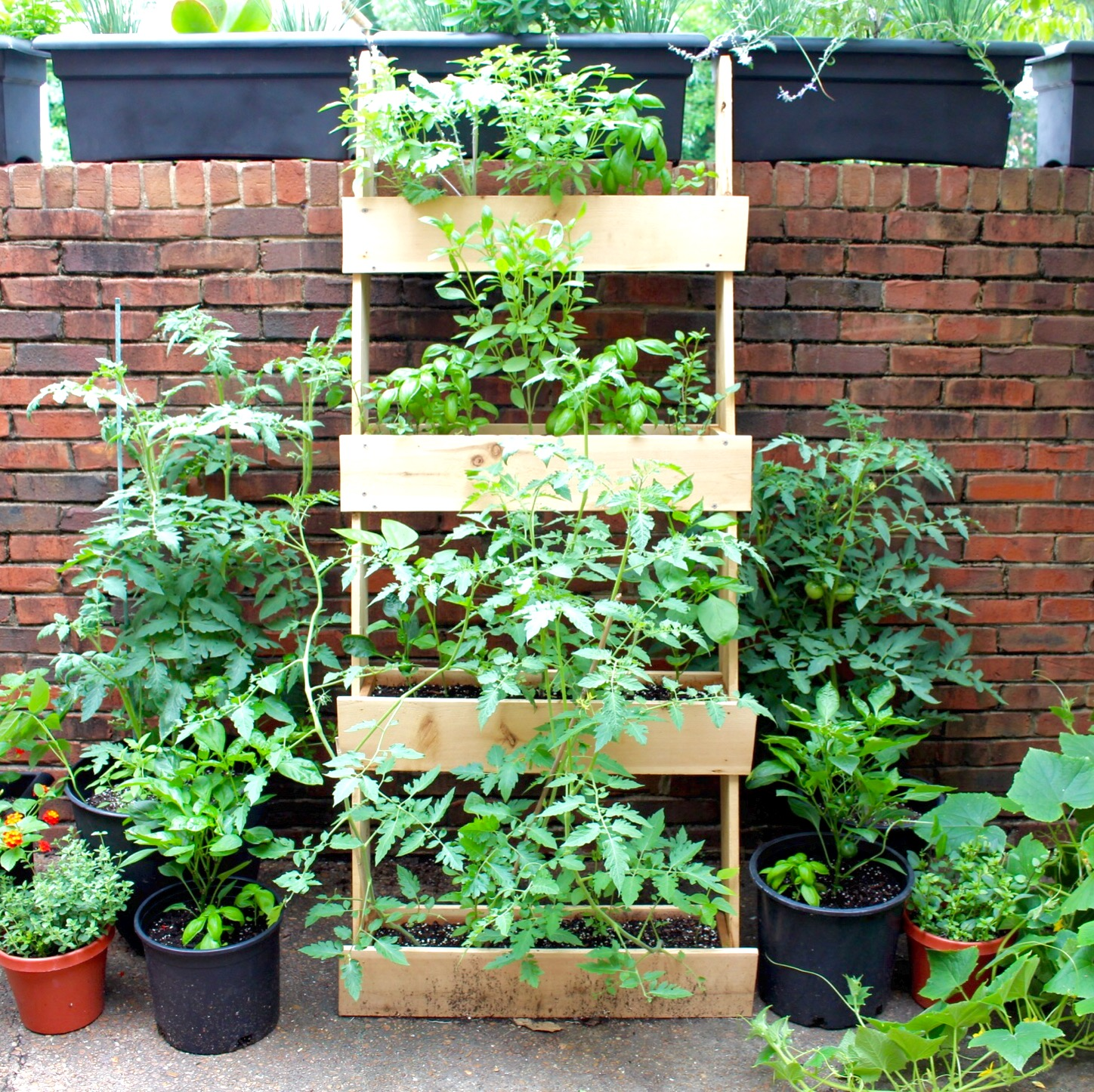 Garden Planter Ladder - July 6th .jpg