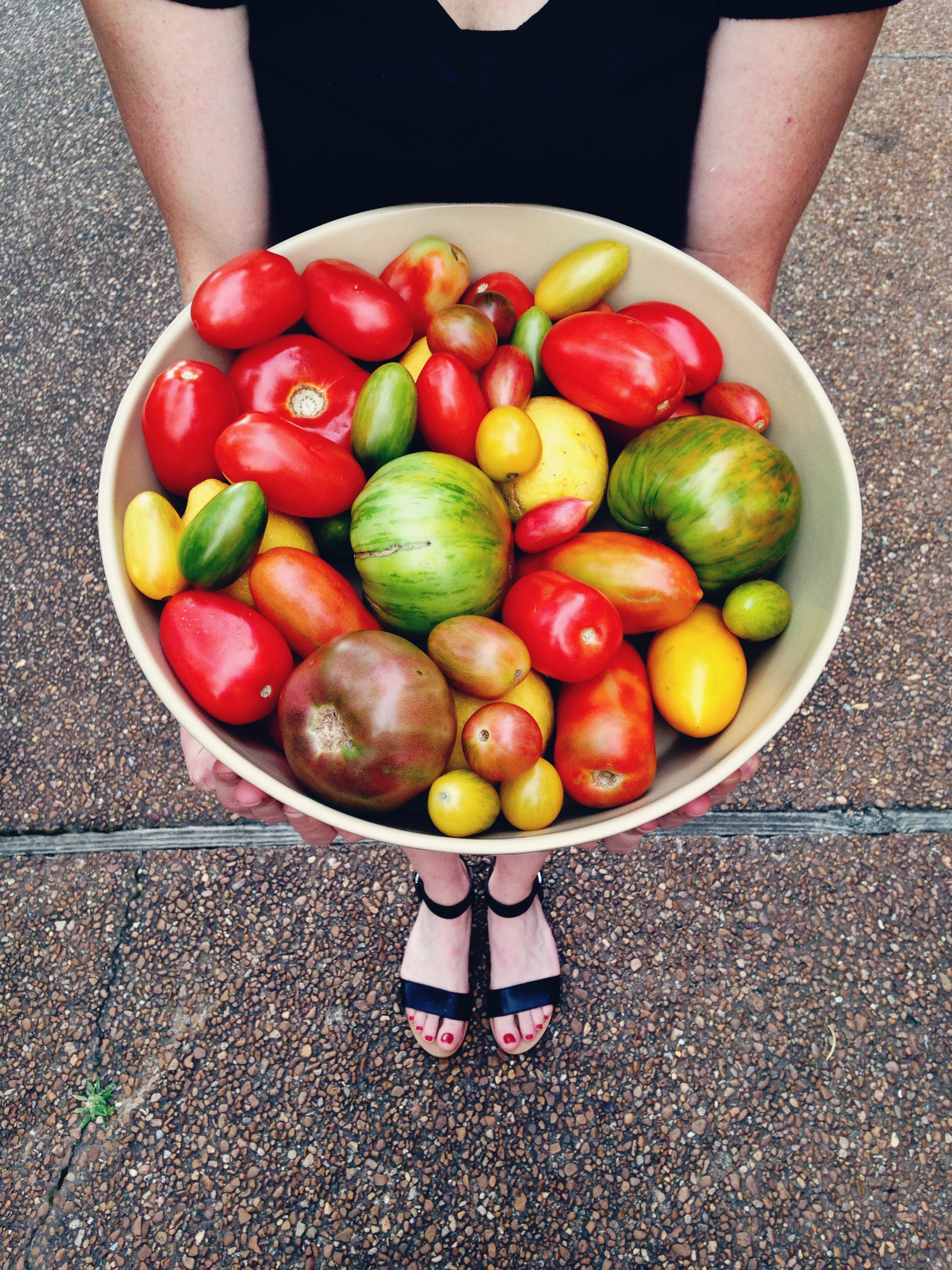 All of It - HEIRLOOM TOMATOES