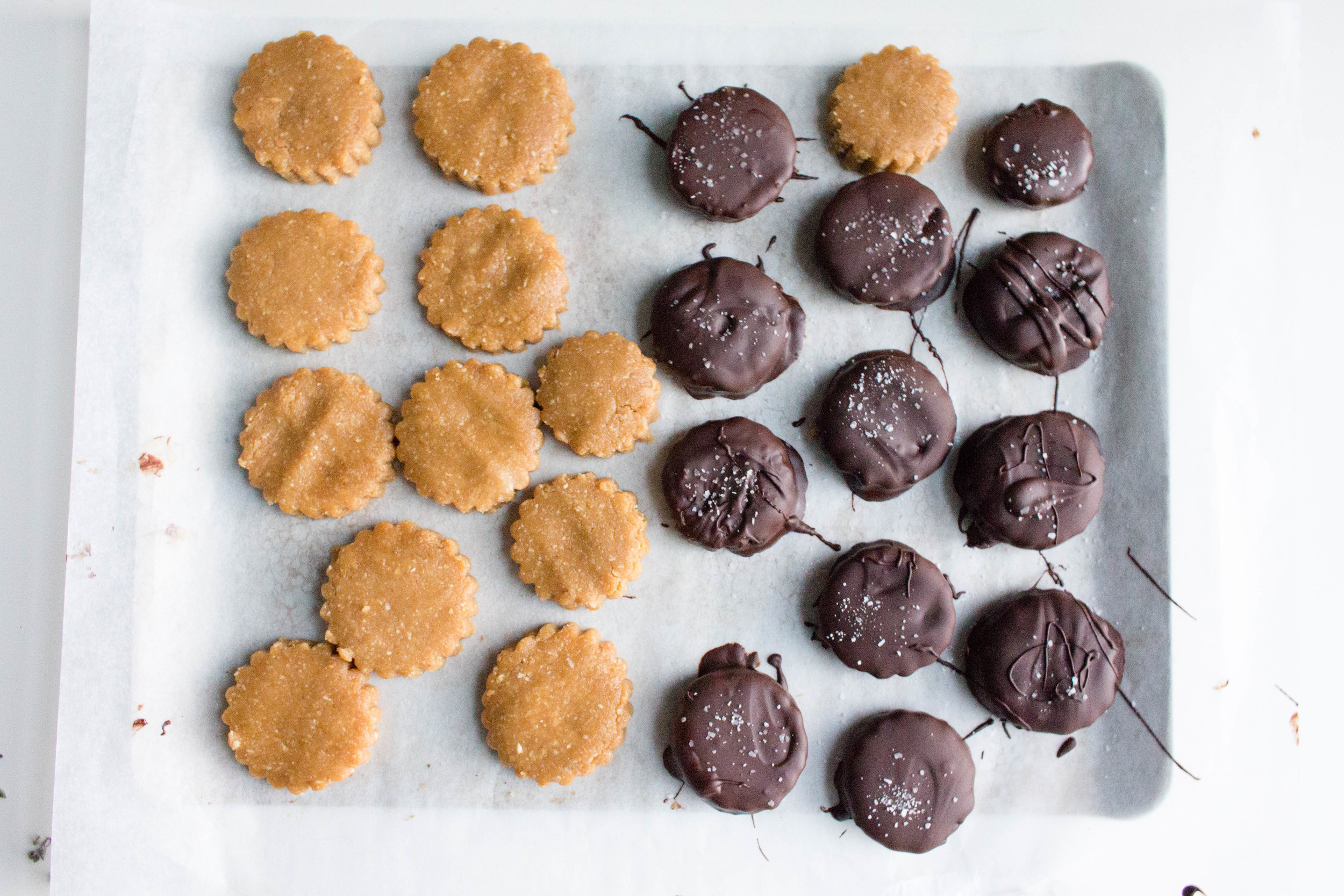 All of It - Vegan Dark Chocolate Peanut Butter Coins