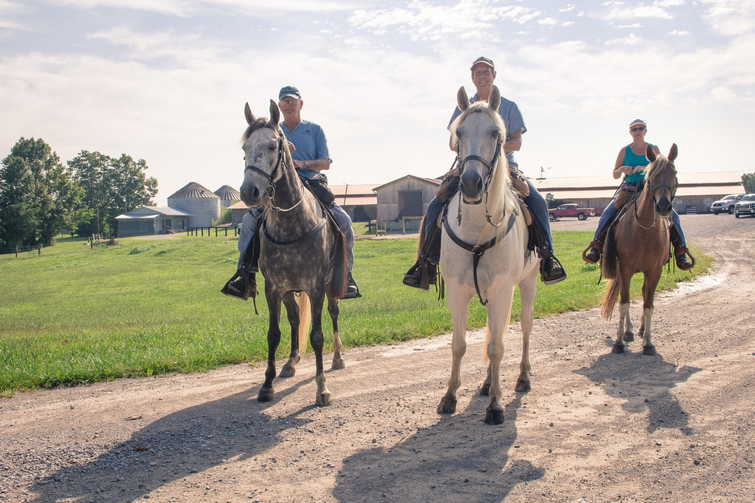All of It - CPSR - East Fork Stables