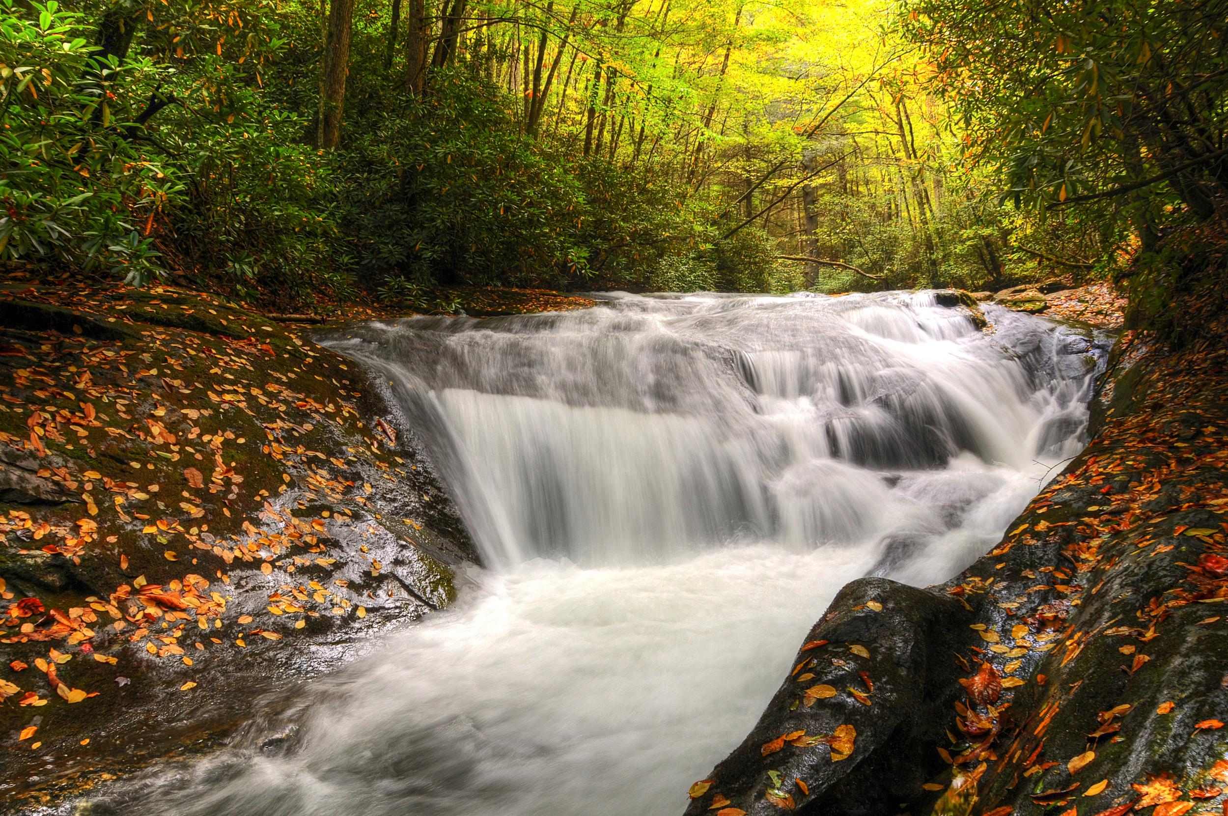 mocassin creek5.jpg