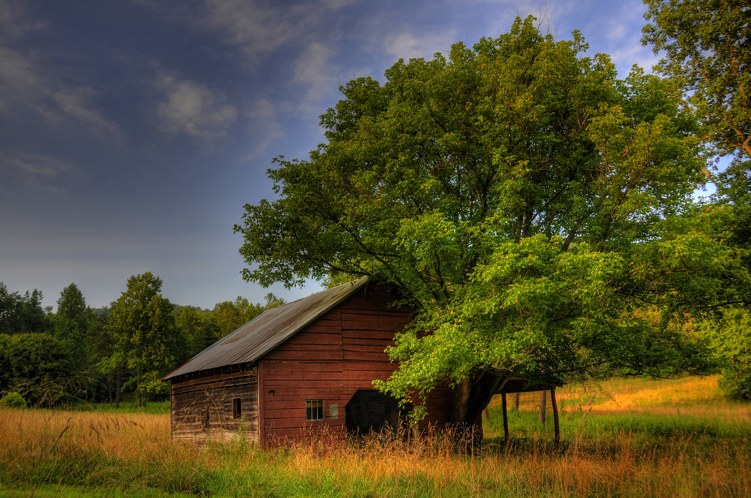 zForest view barn1.jpg
